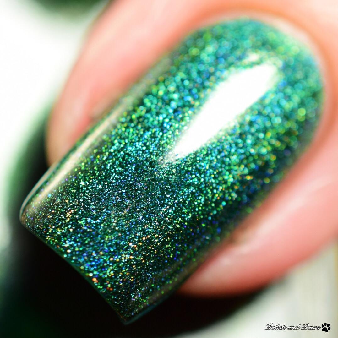 Starlight Polish Spruce