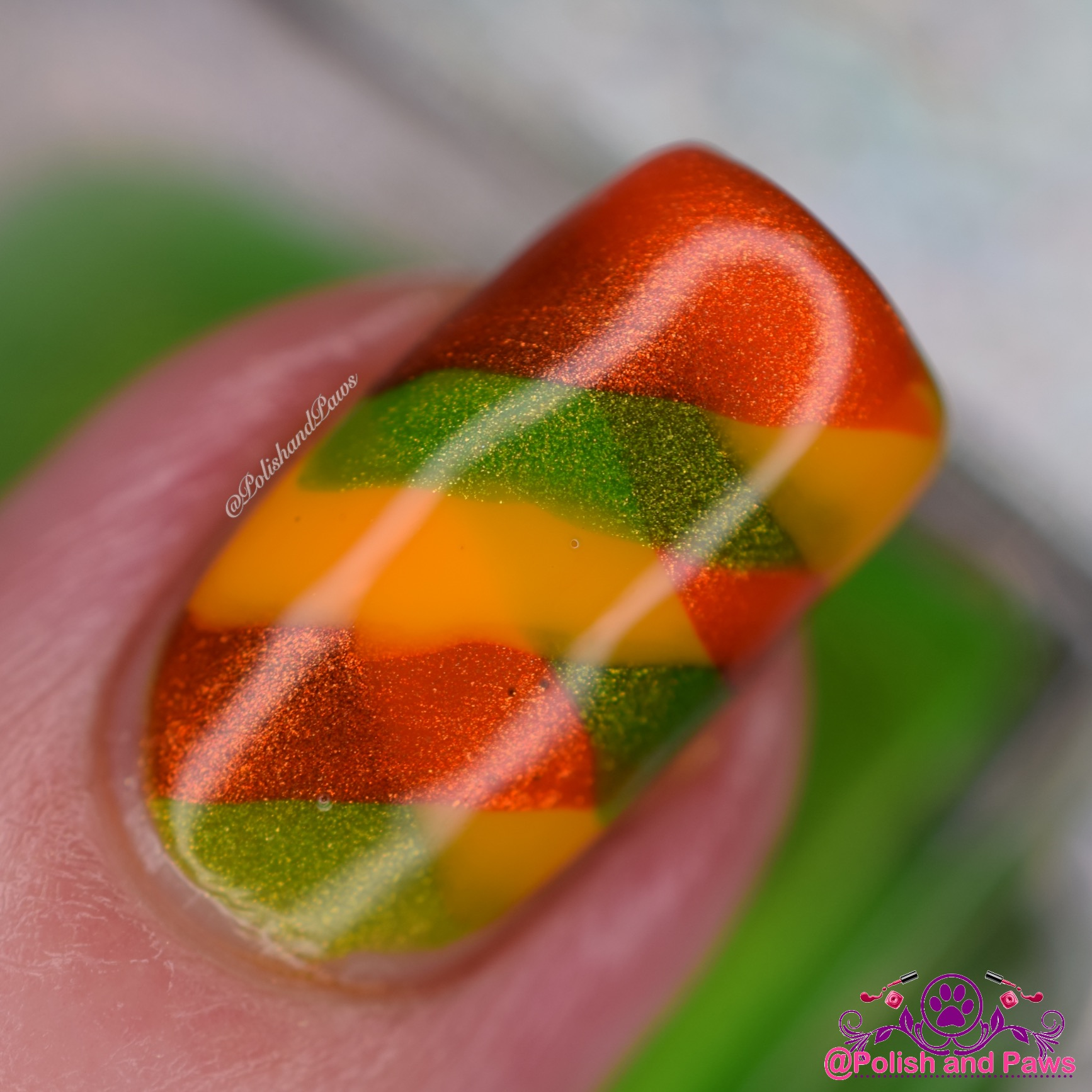 Braided Nails Macro