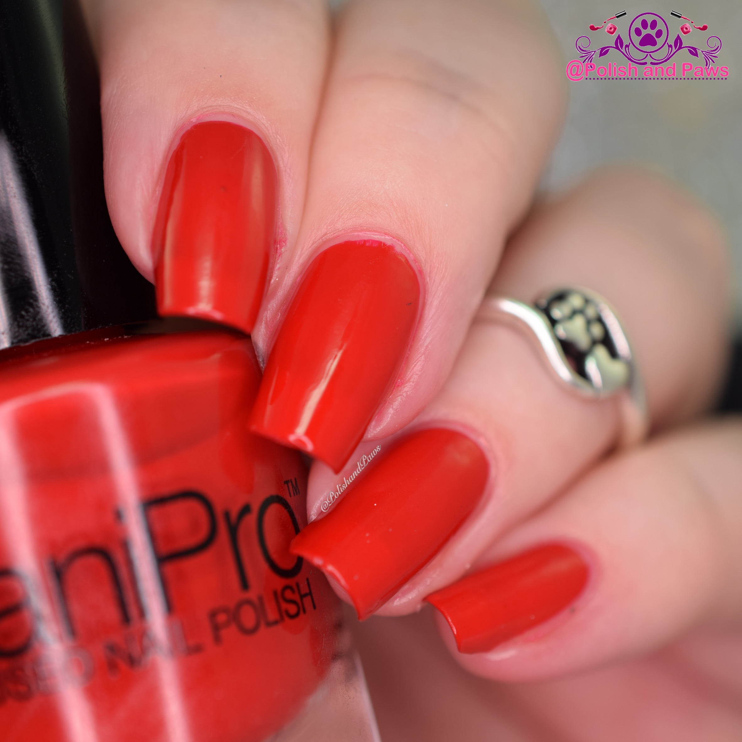 daniPro Red