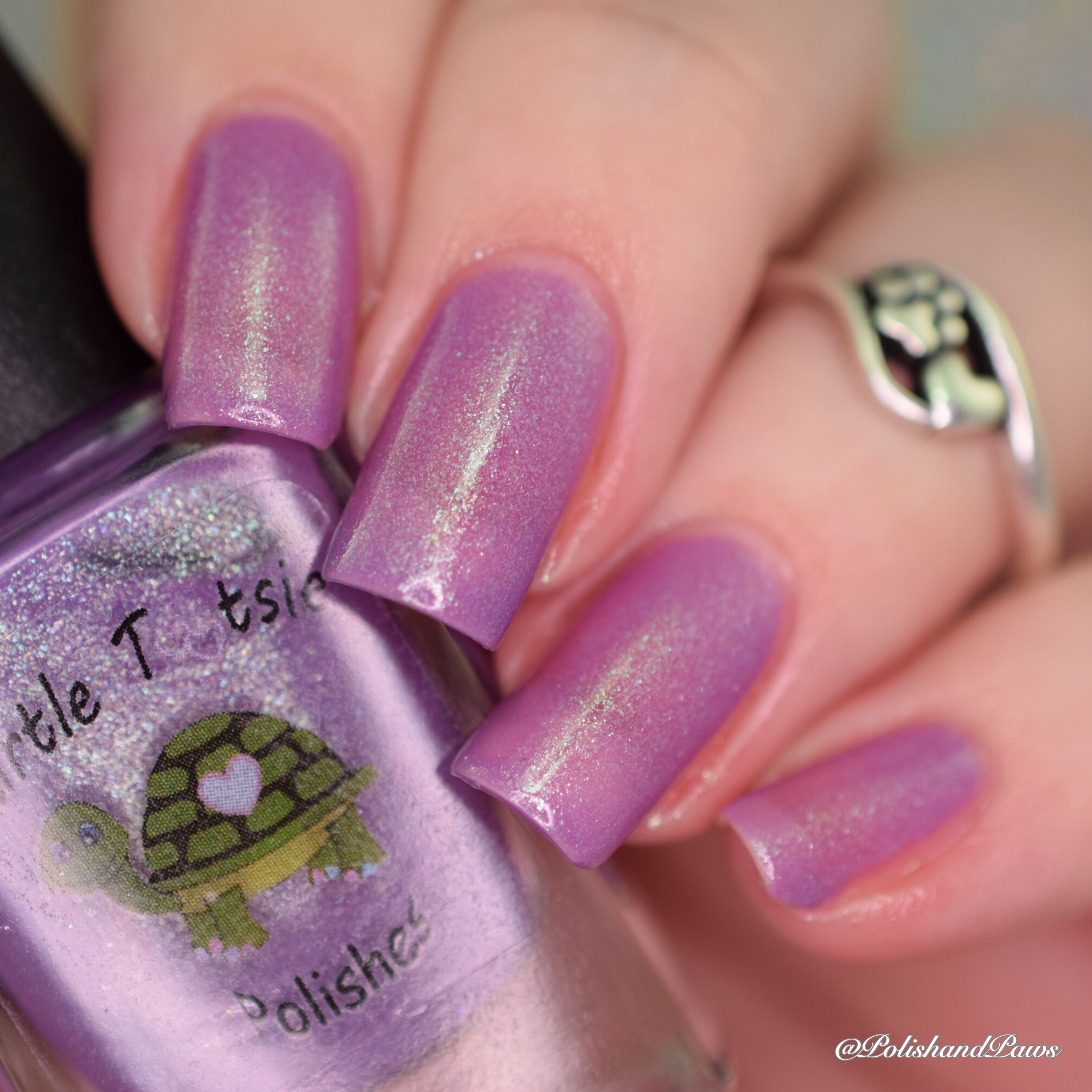 Turtle Tootsie Polishes Elven Mystic
