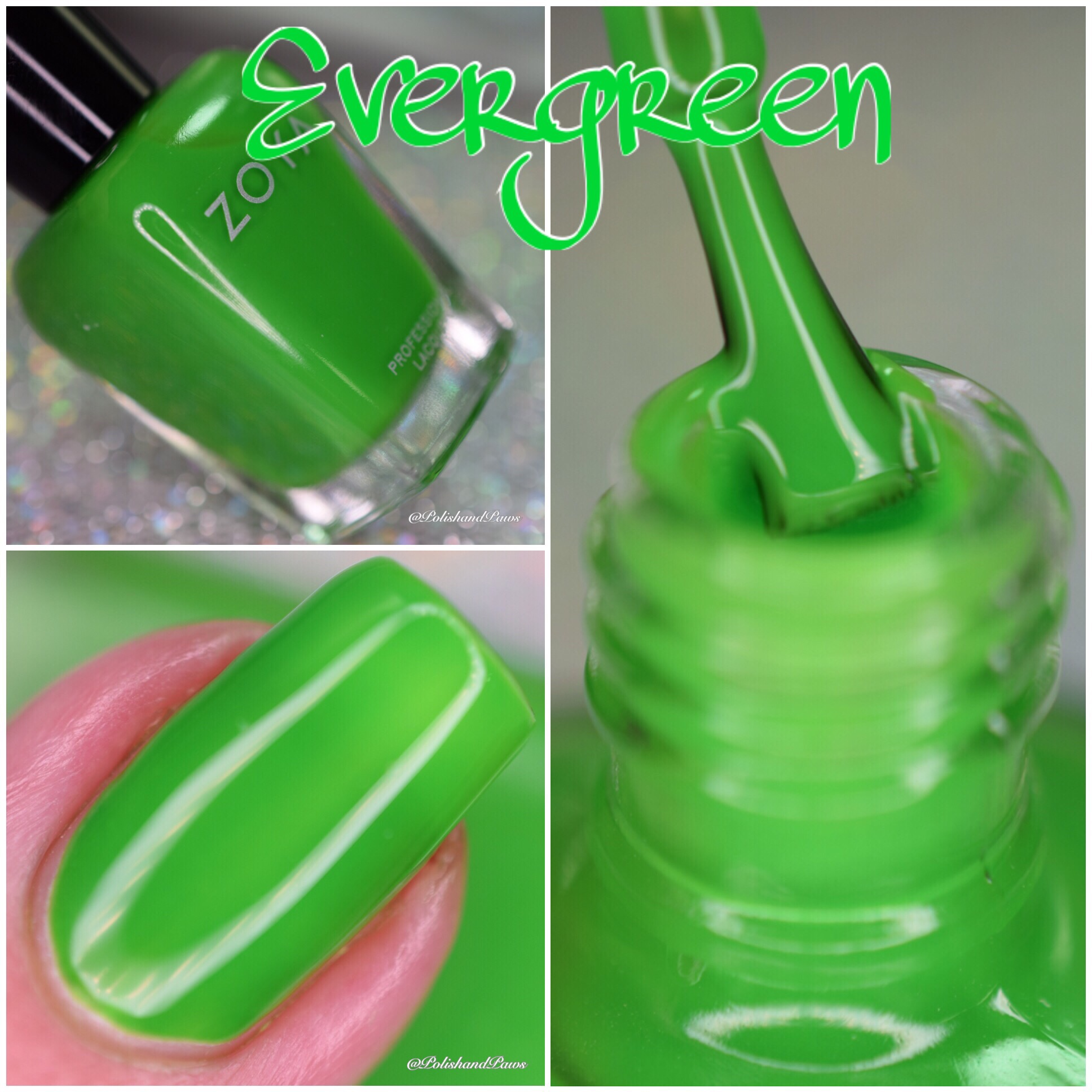 Zoya Evergreen UltraBrite Neons