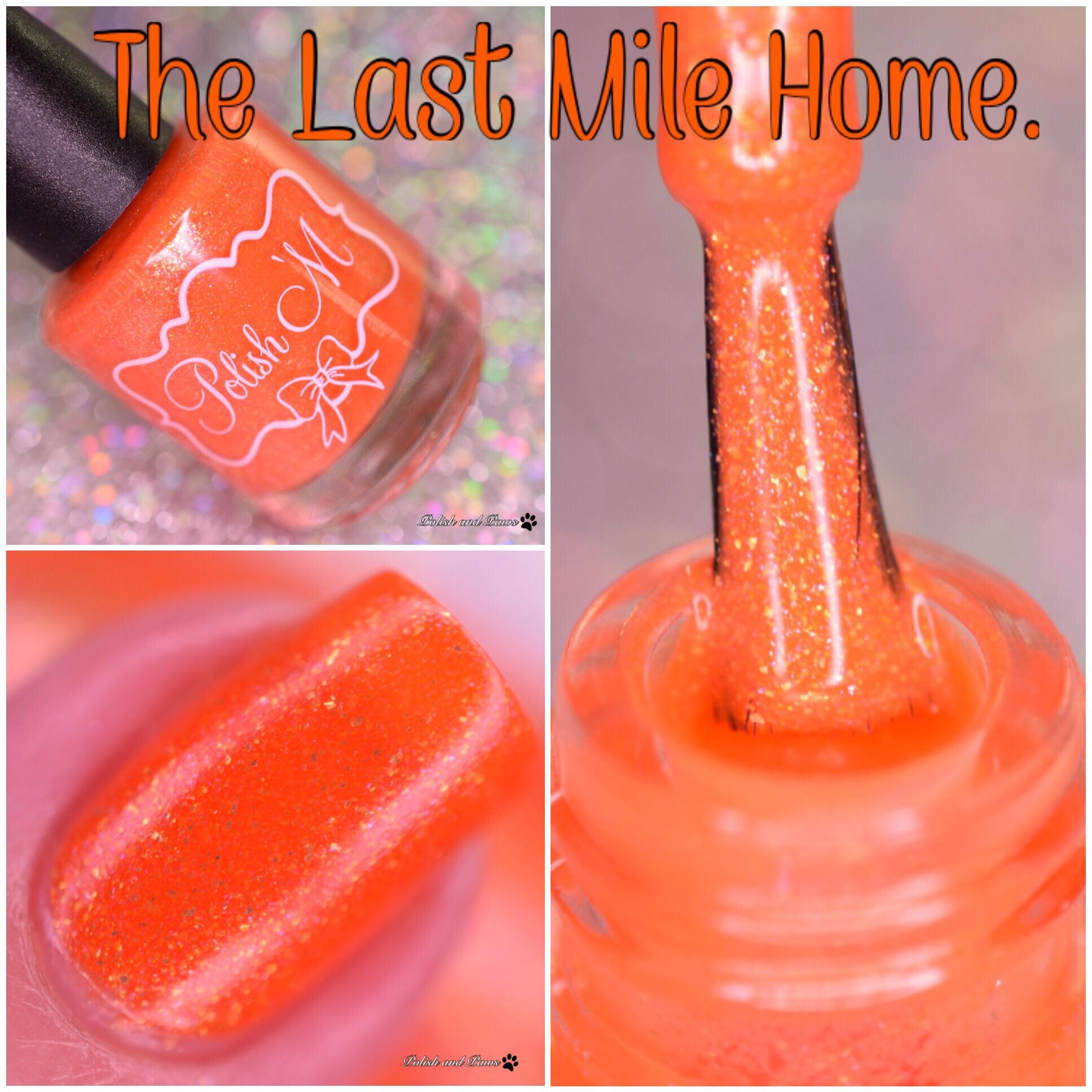 Polish M The Last Mile Home