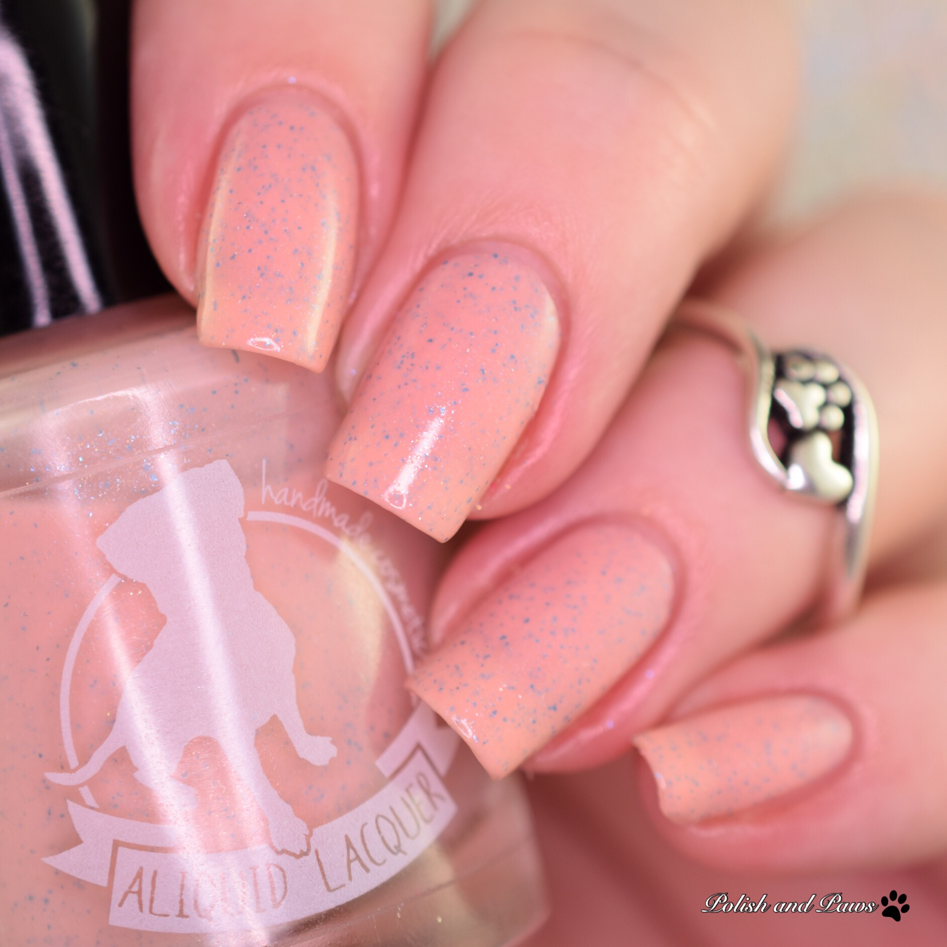 Aliquid Lacquer Canal Couture