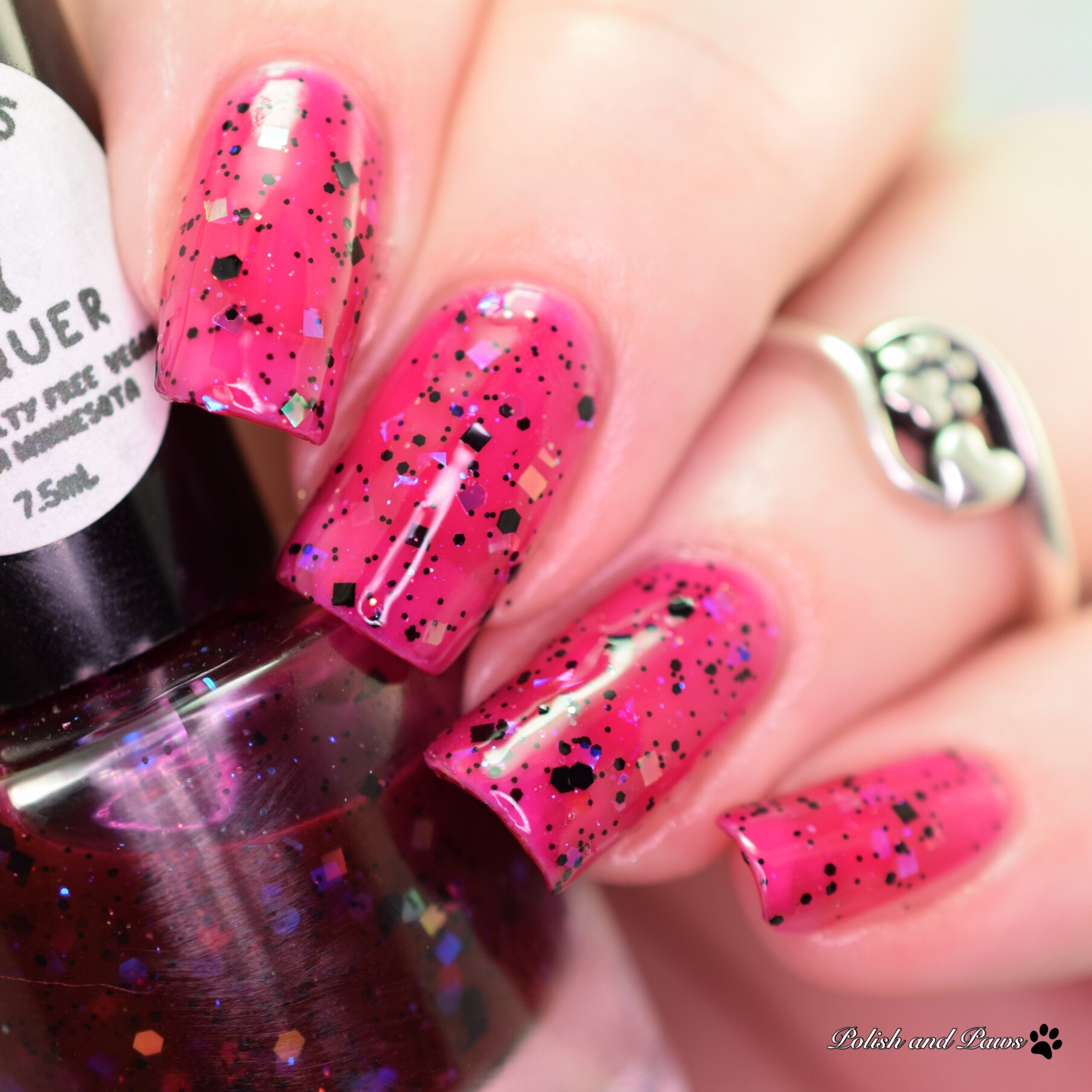 Leesha\'s Lacquer Dia de los Muertos Collection | Polish and Paws