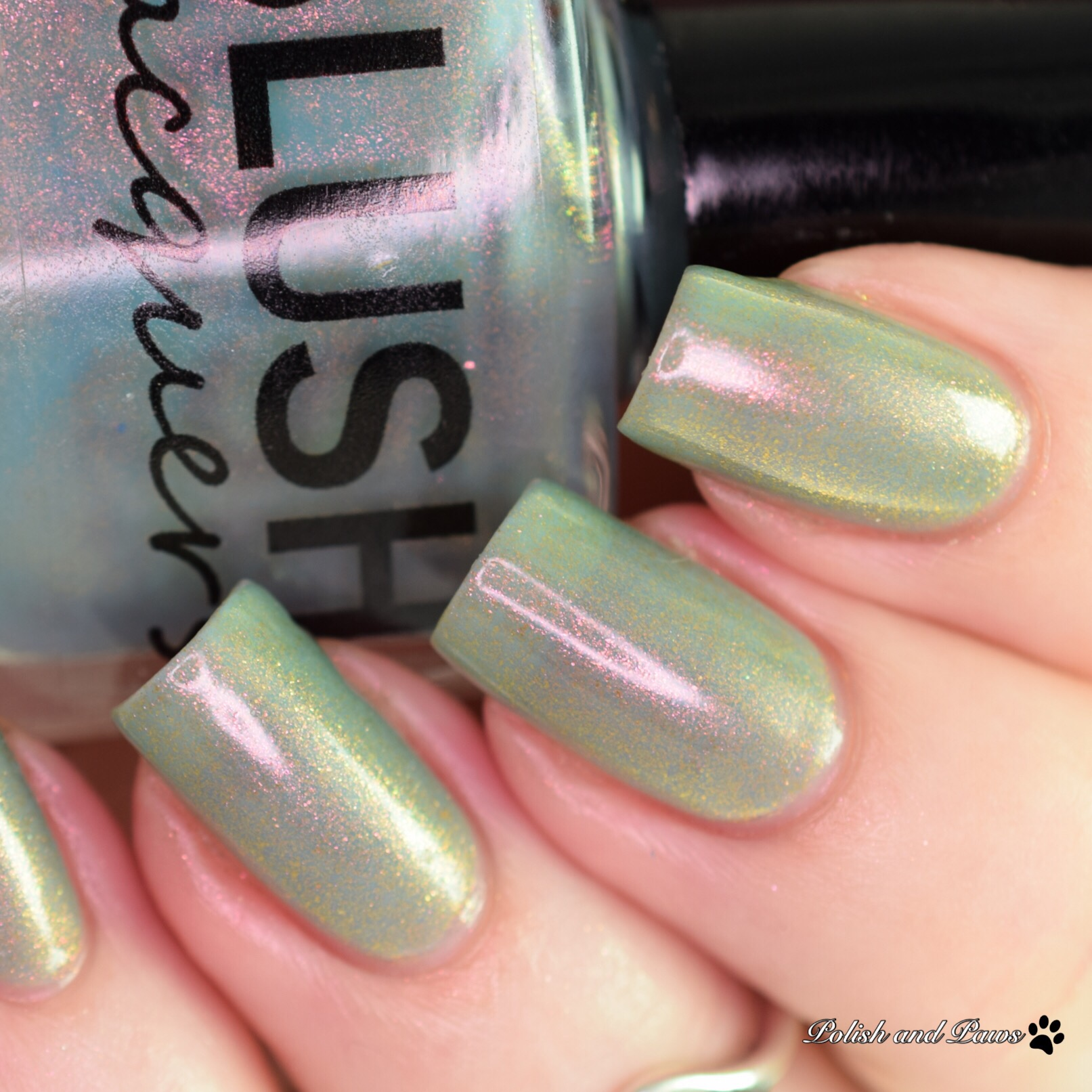 Blush Lacquers Shelly O'The Sands