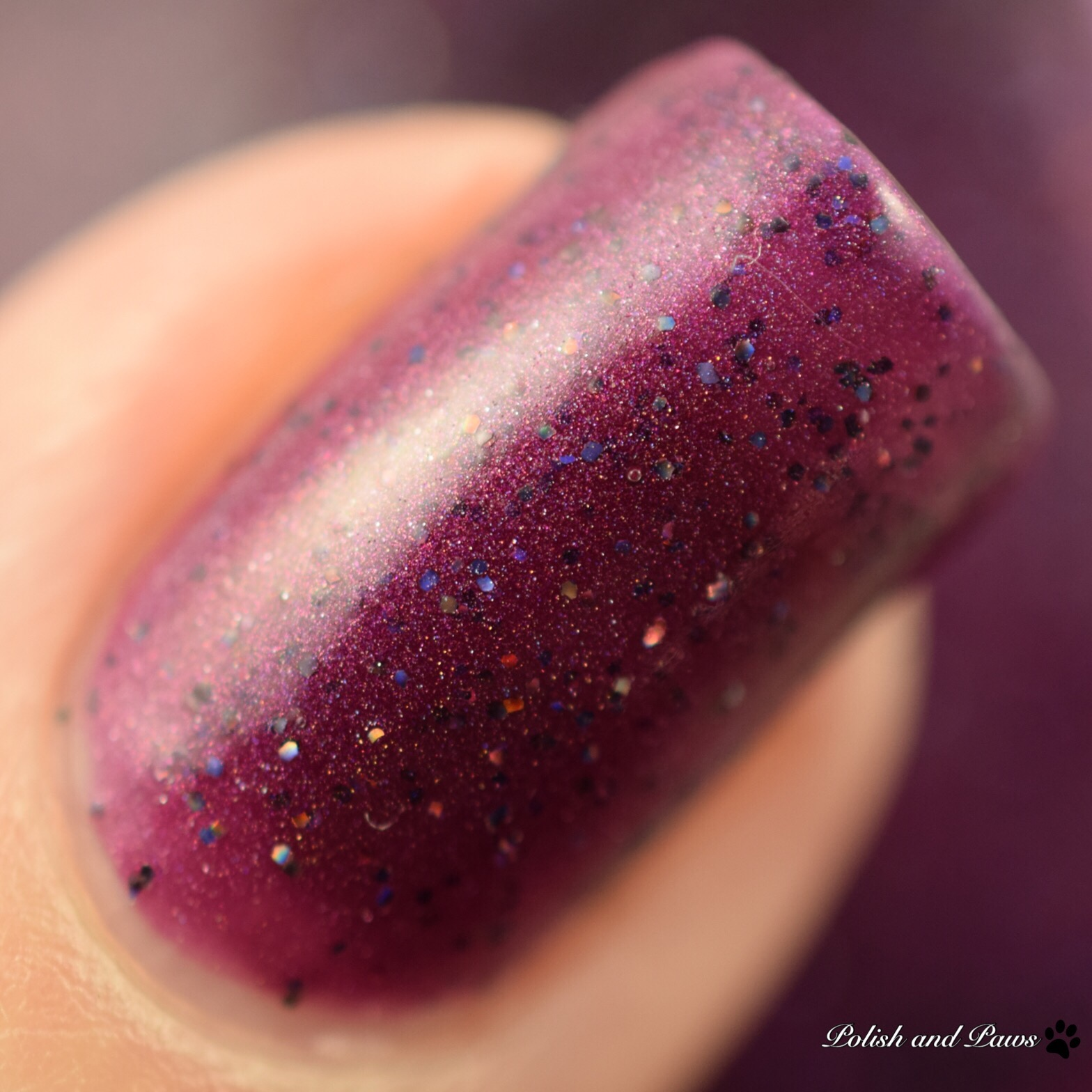 Blush Lacquers Dance Floor Lovers