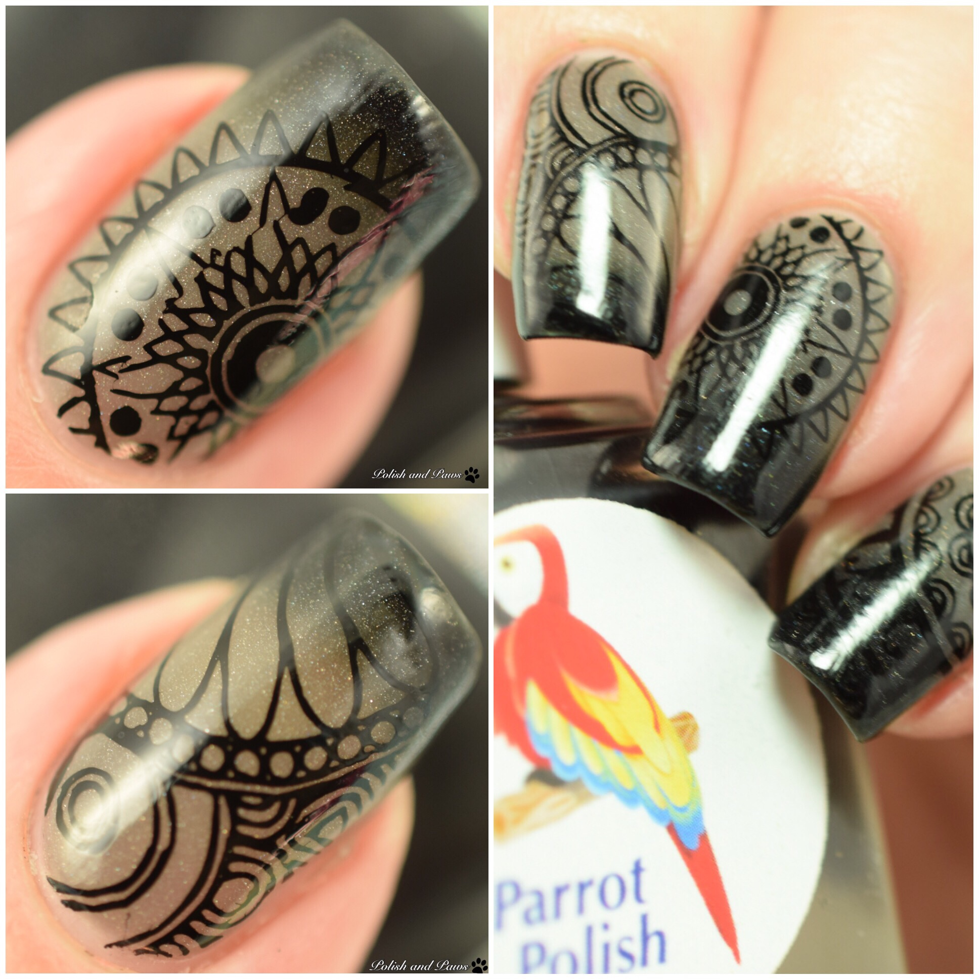 Parrot Polish Black Magic