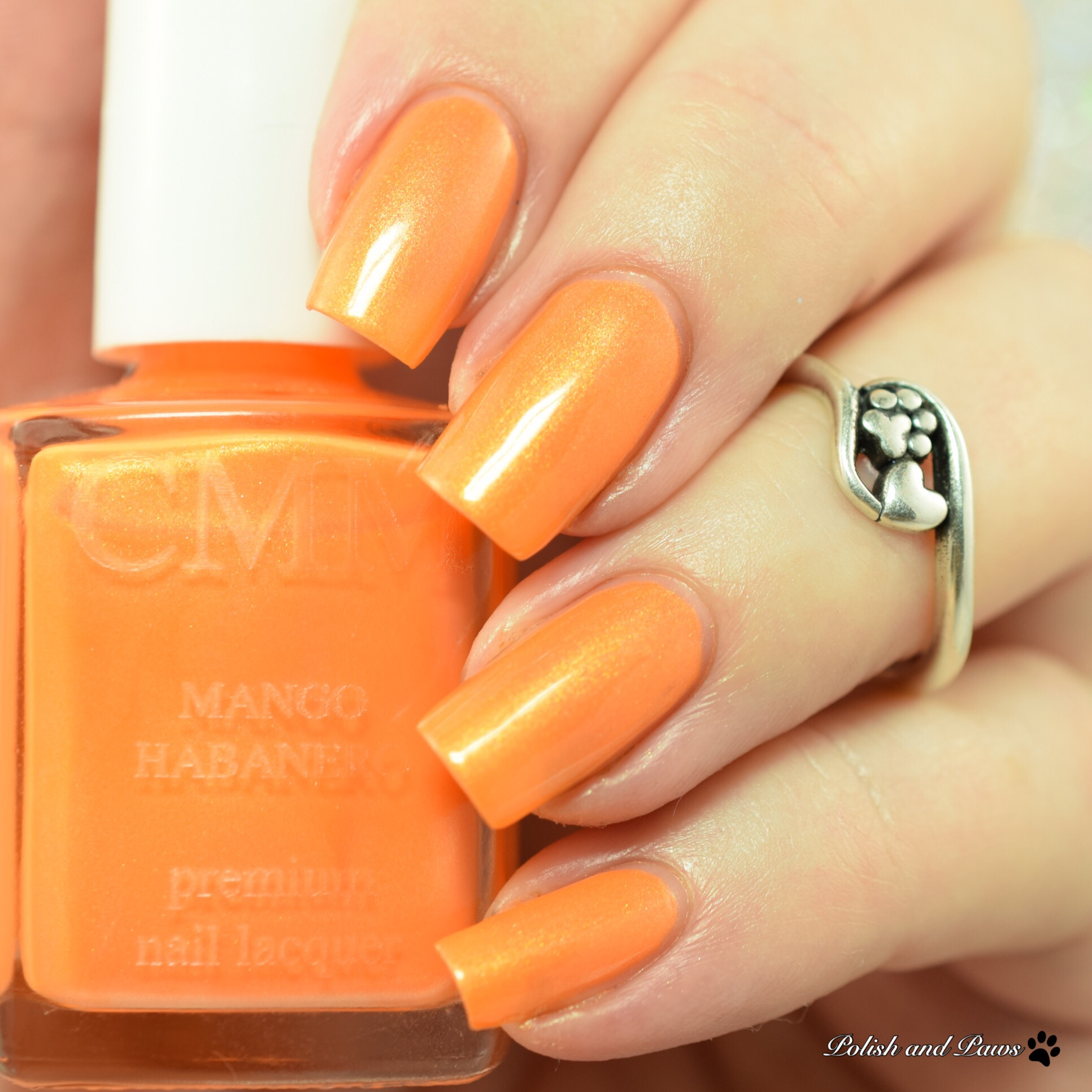 Color Me Monthly ~ Swatch and Review | Polish and Paws