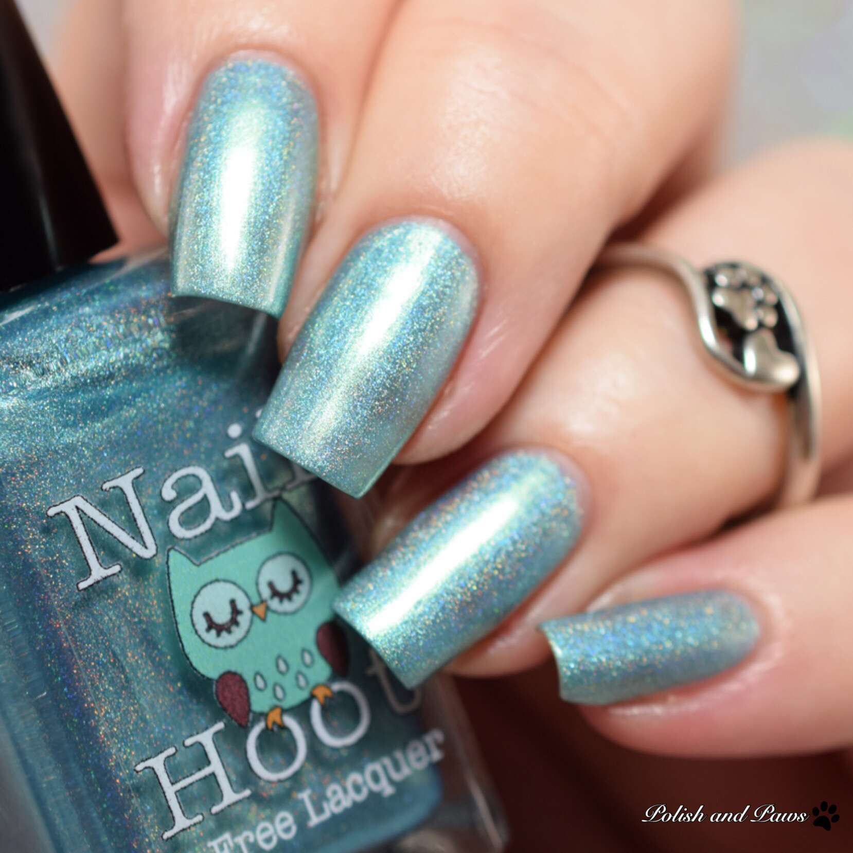 Nail Hoot December Turquoise