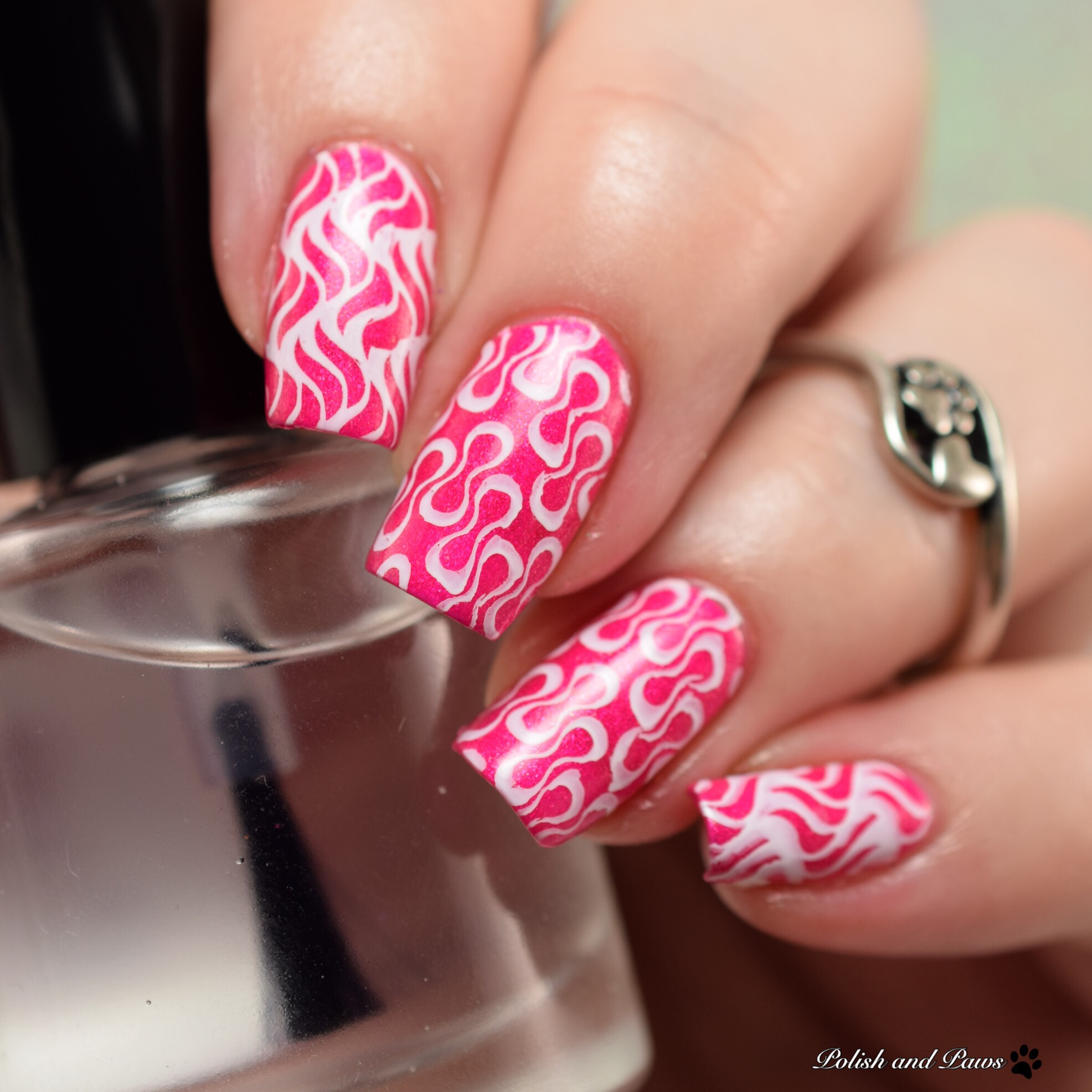 Lina Nail Art Stamping Plates Review Polish And Paws