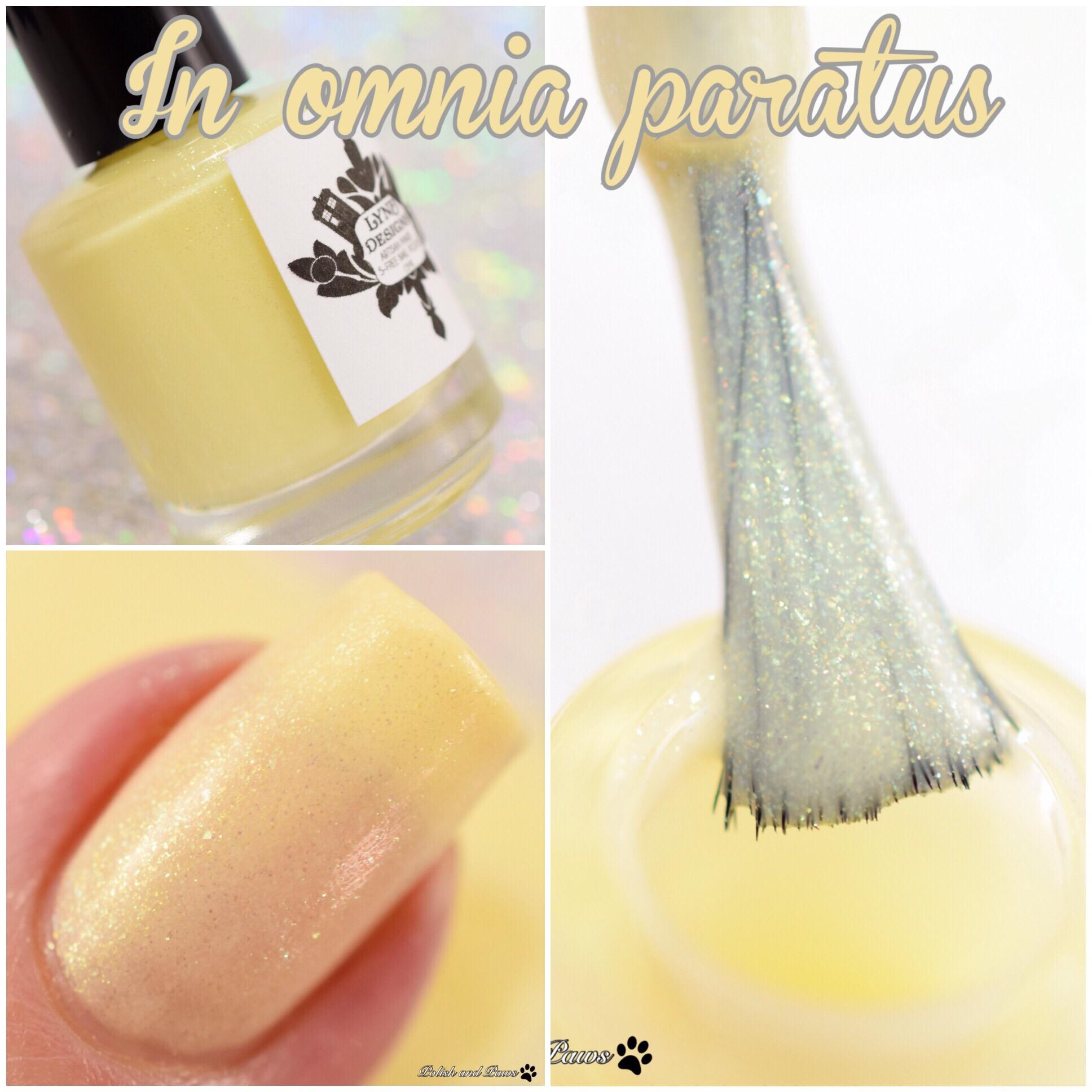 LynB Designs In Omnia Paratus