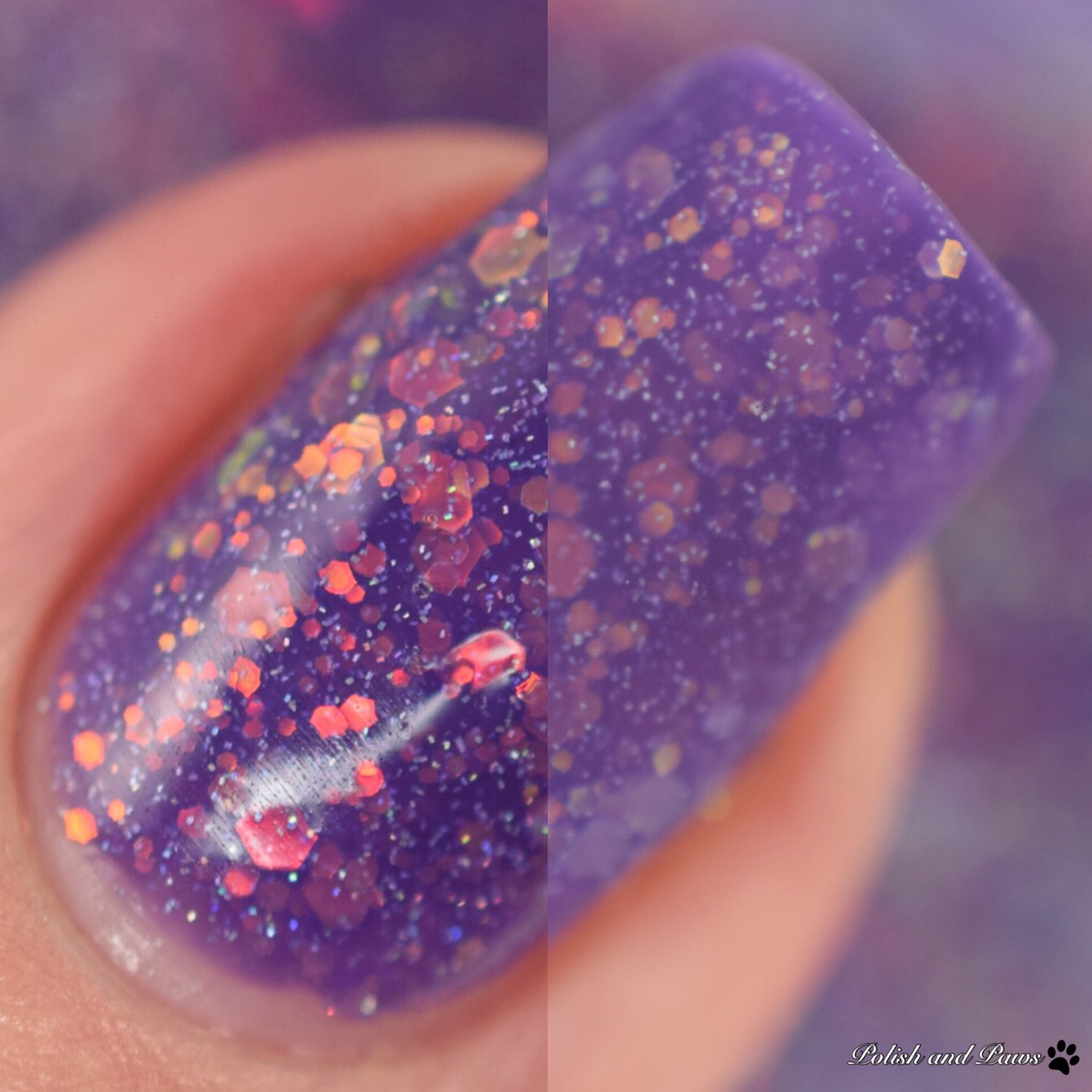 Glam Polish Fantastic Beasts and Where to Find Them