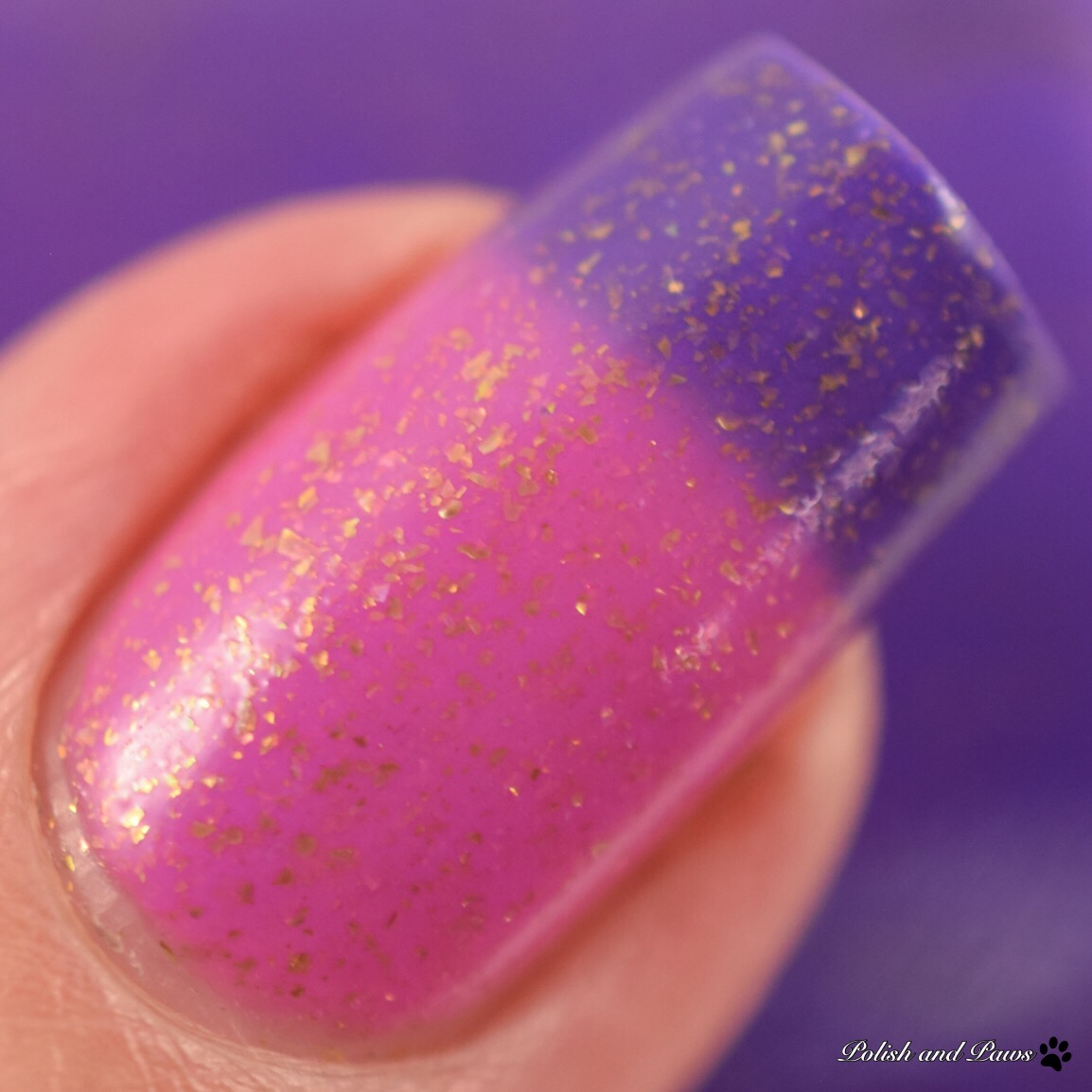 Blush Lacquers Ride into the Sunset