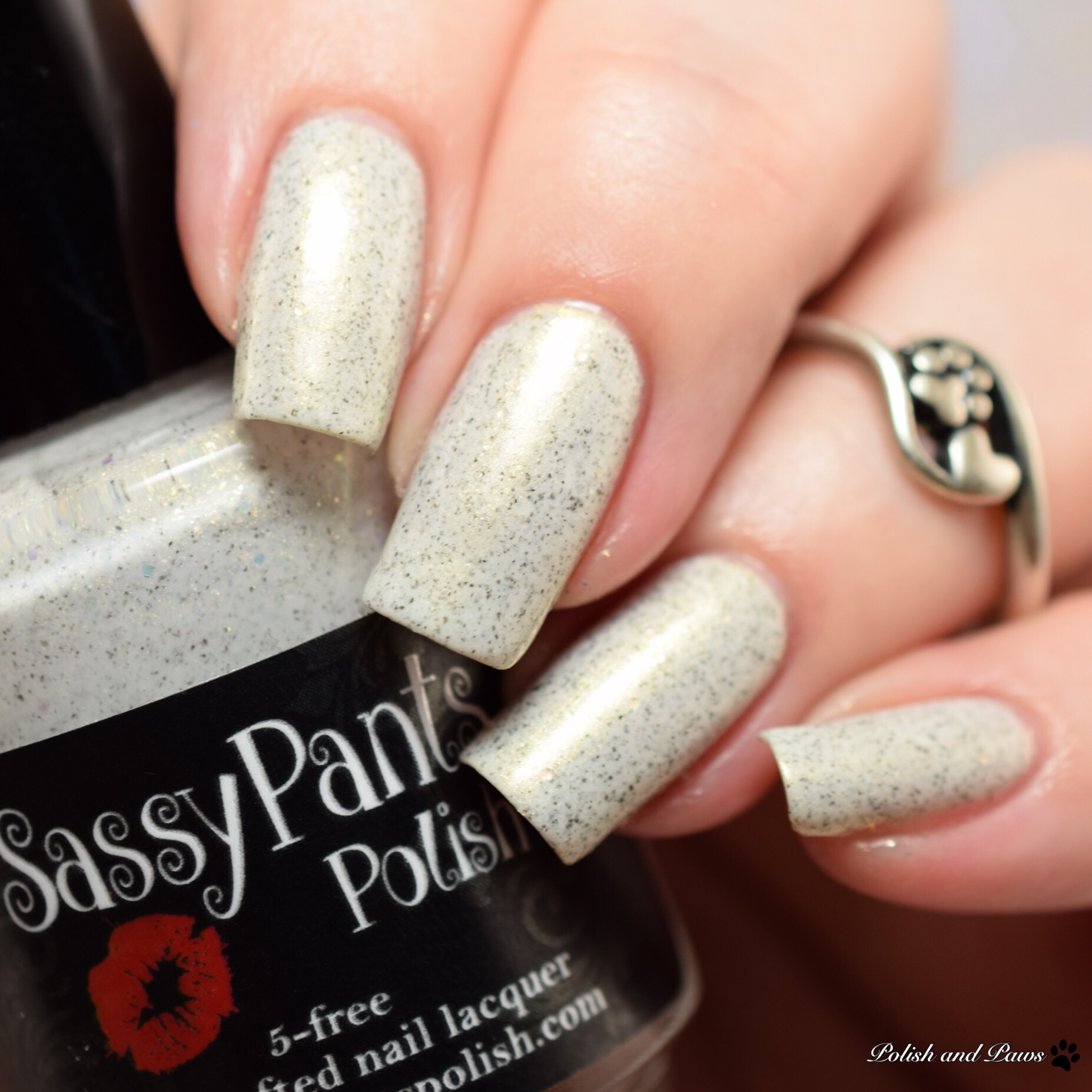 Sassy Pants Polish Winter Sunset