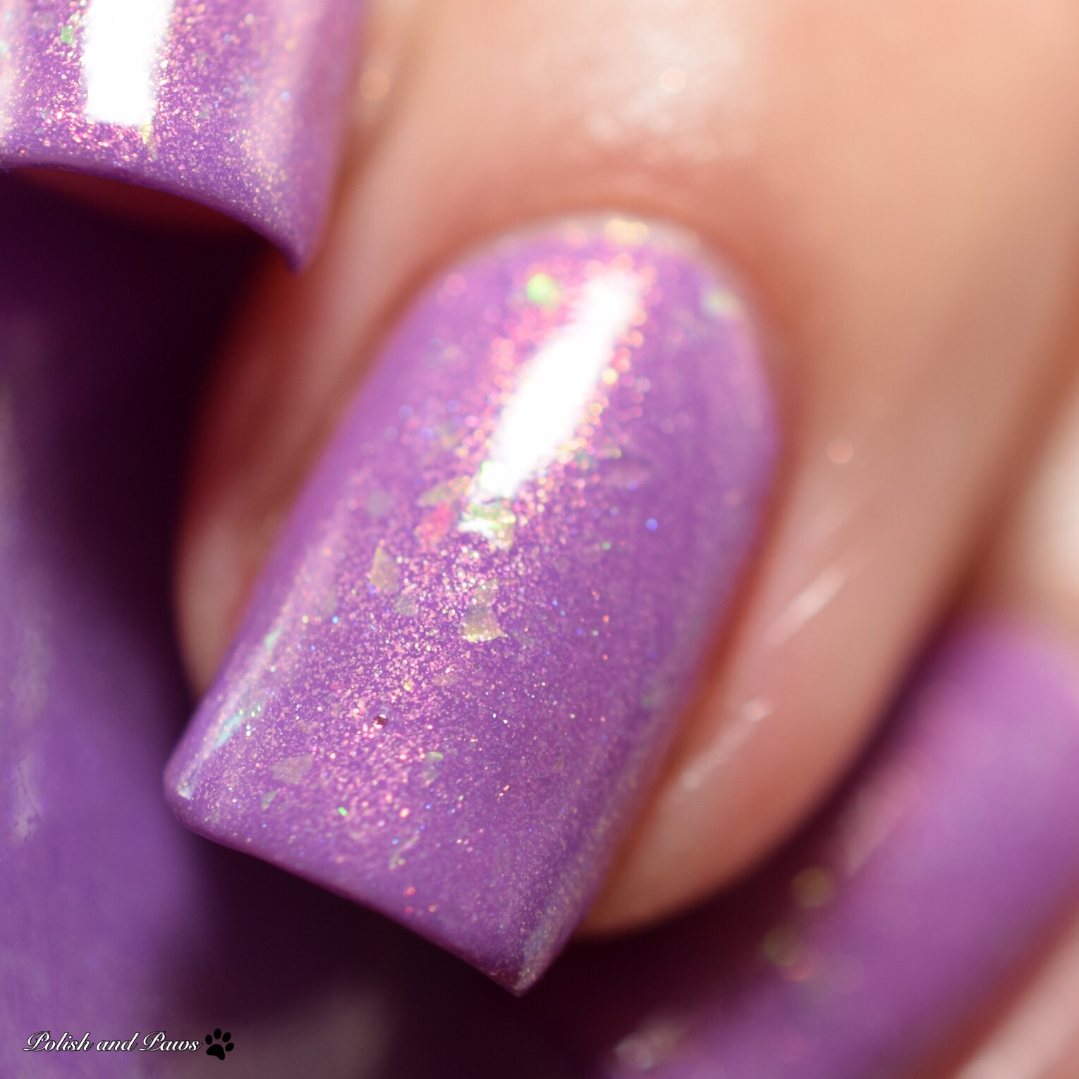 Alchemy Lacquers Sweet Violet