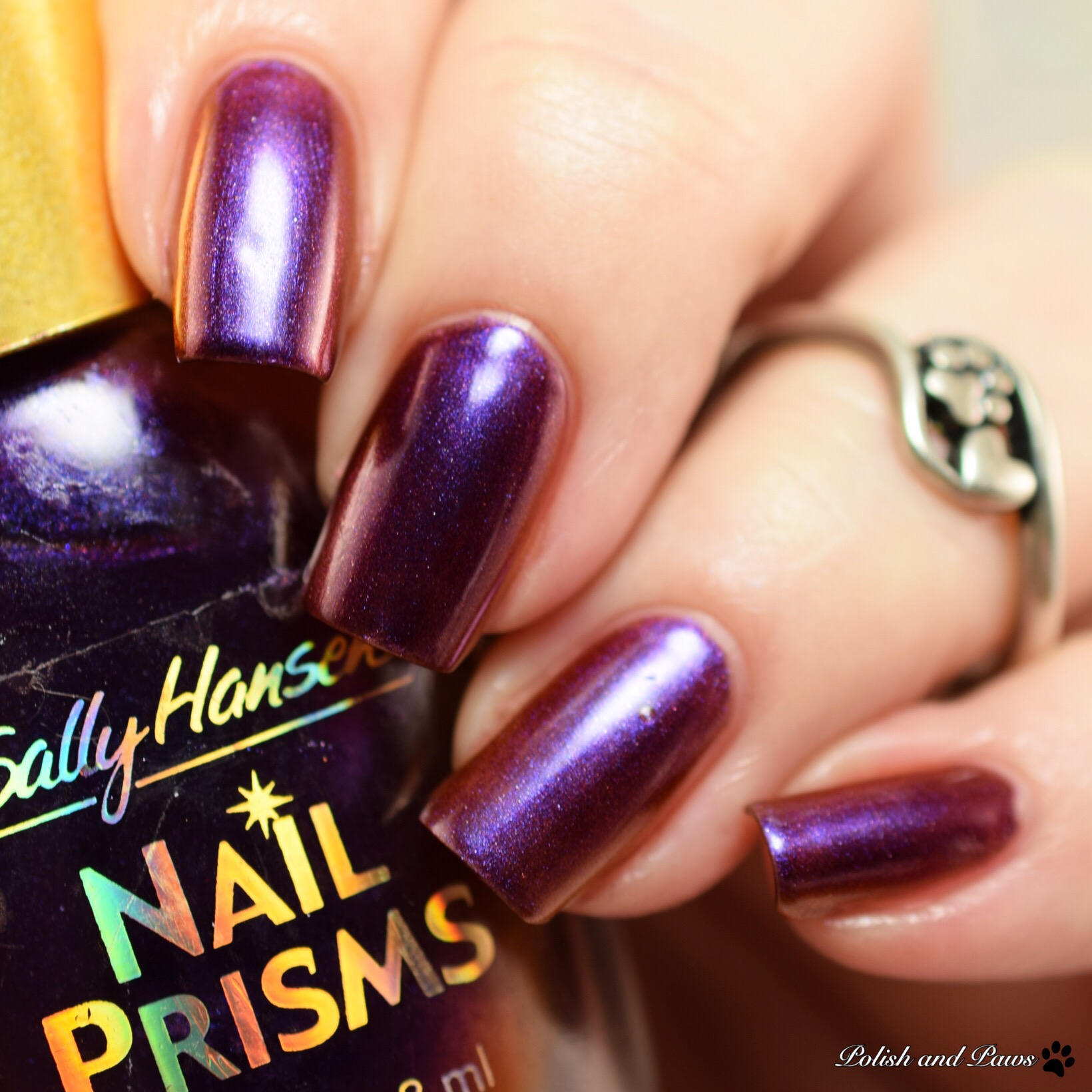 Sally Hansen Burgundy Orchid Nail Prisms