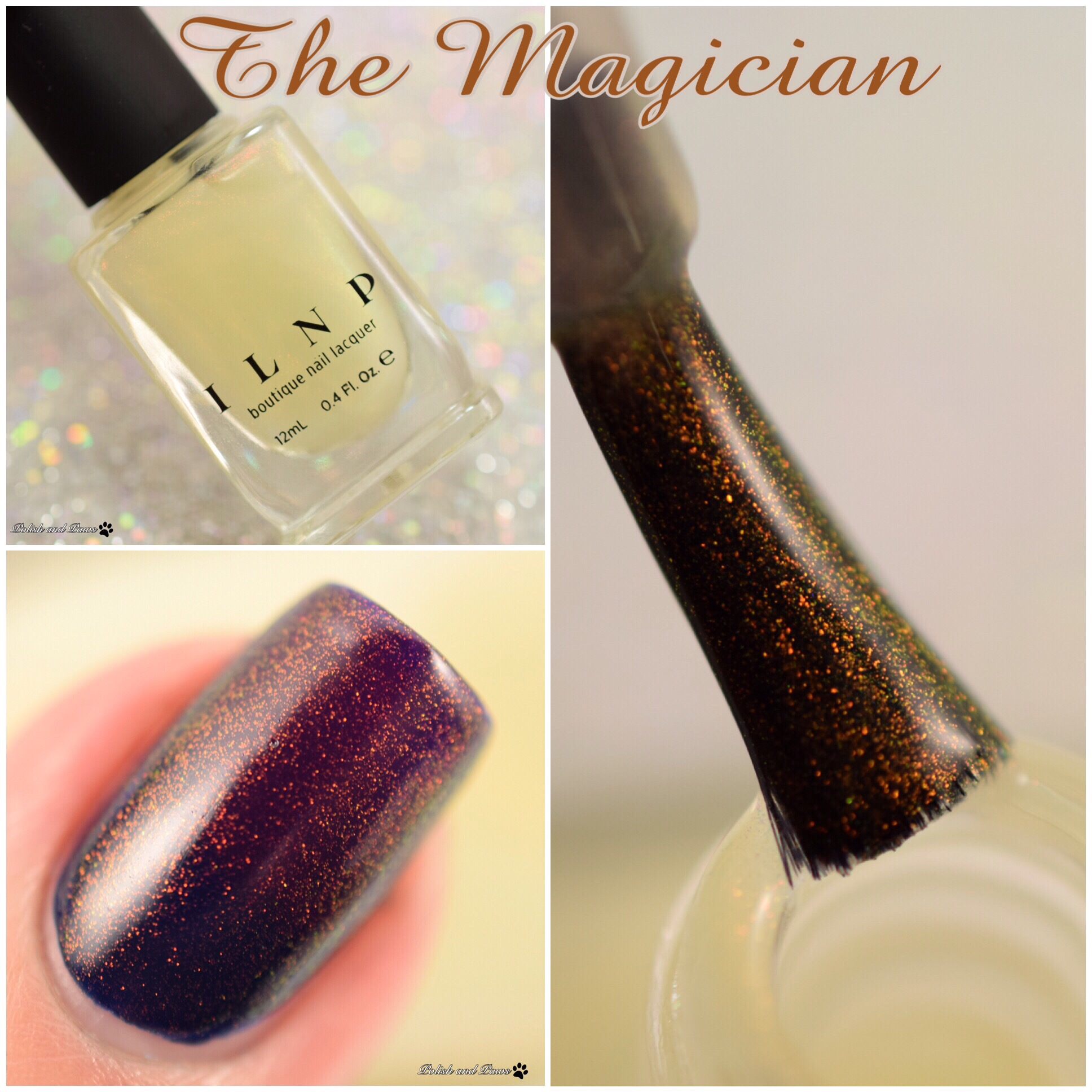 ILNP The Magician