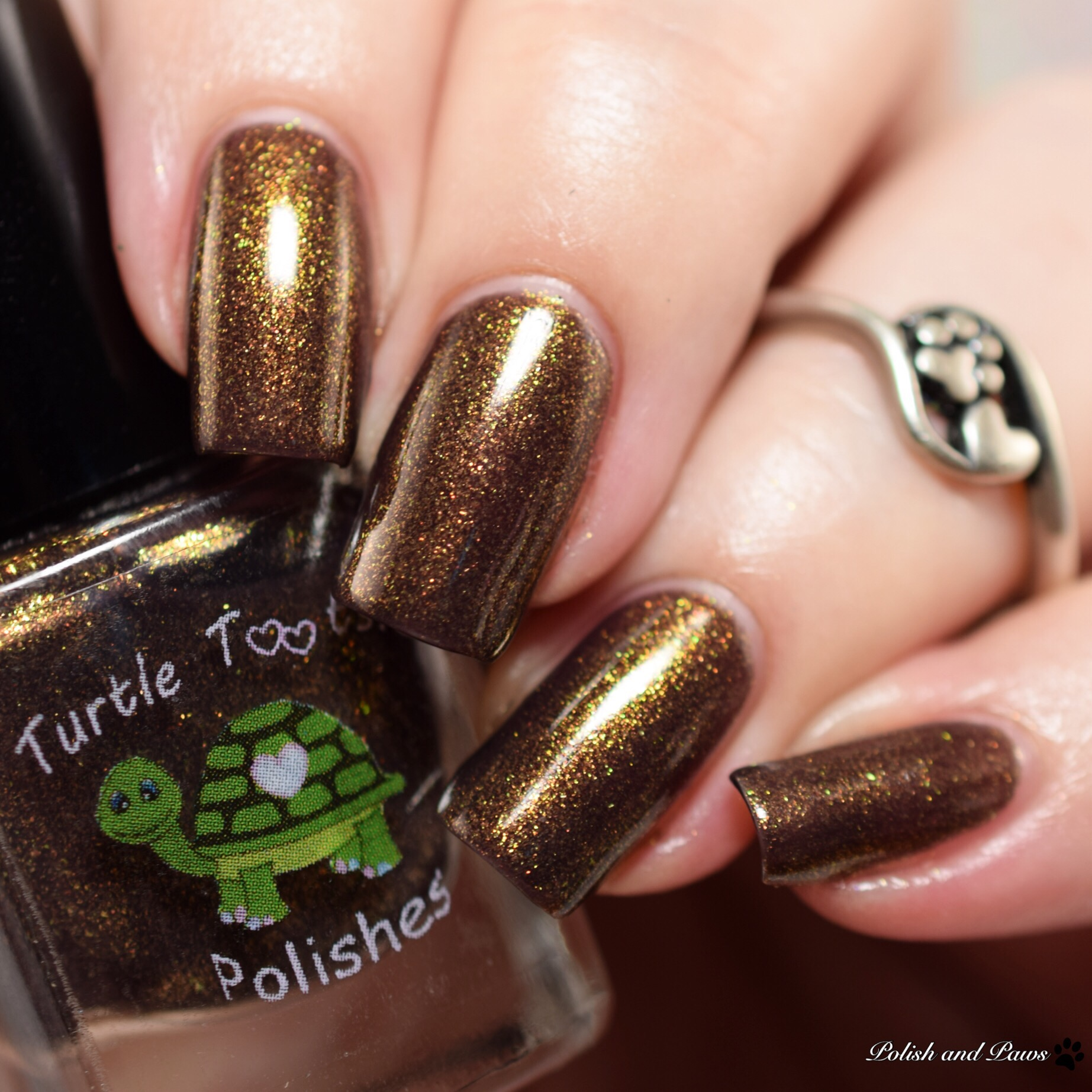 Turtle Tootsie Polishes Liberty Bell