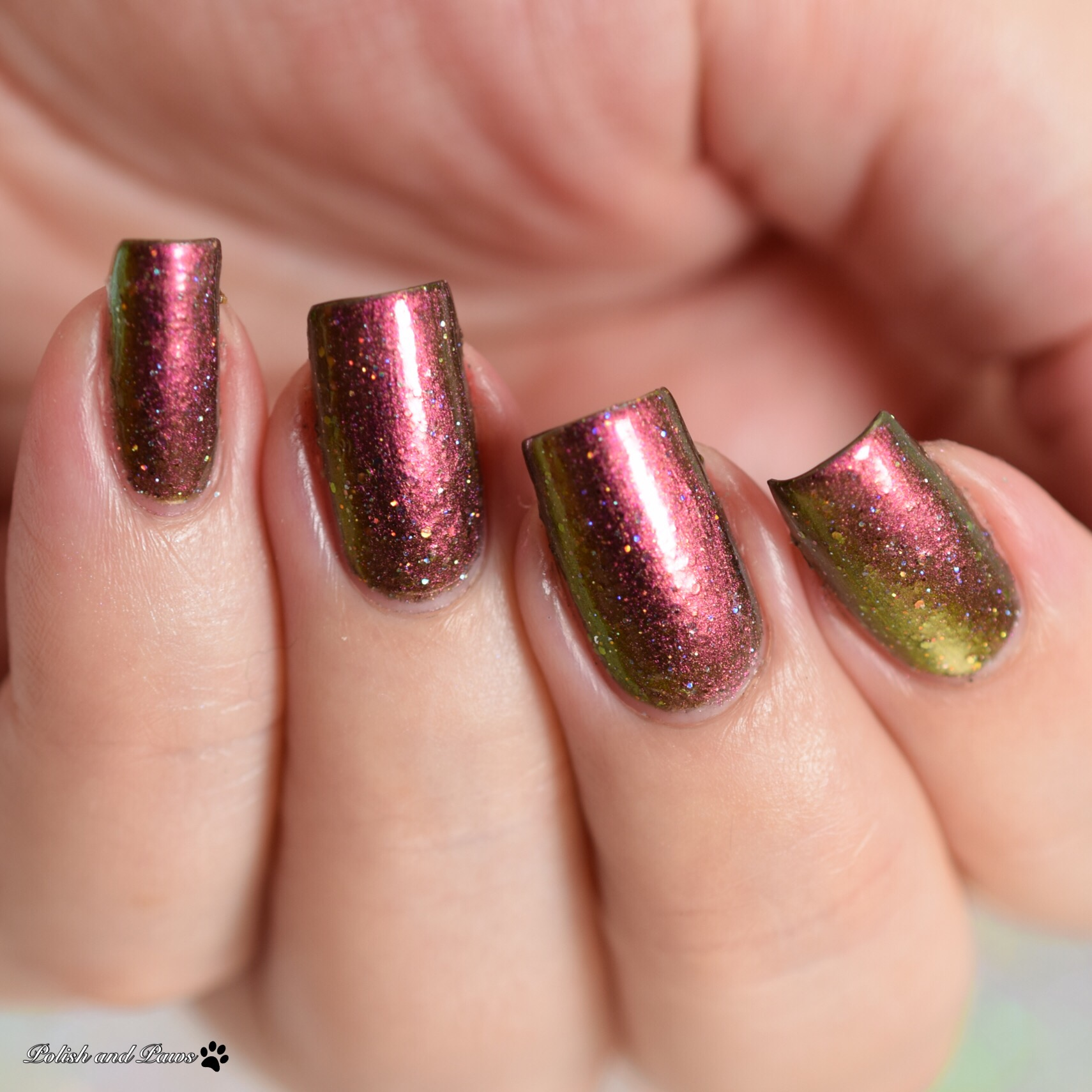 Glam Polish Dance with Dragons Collection (partial) | Polish and Paws