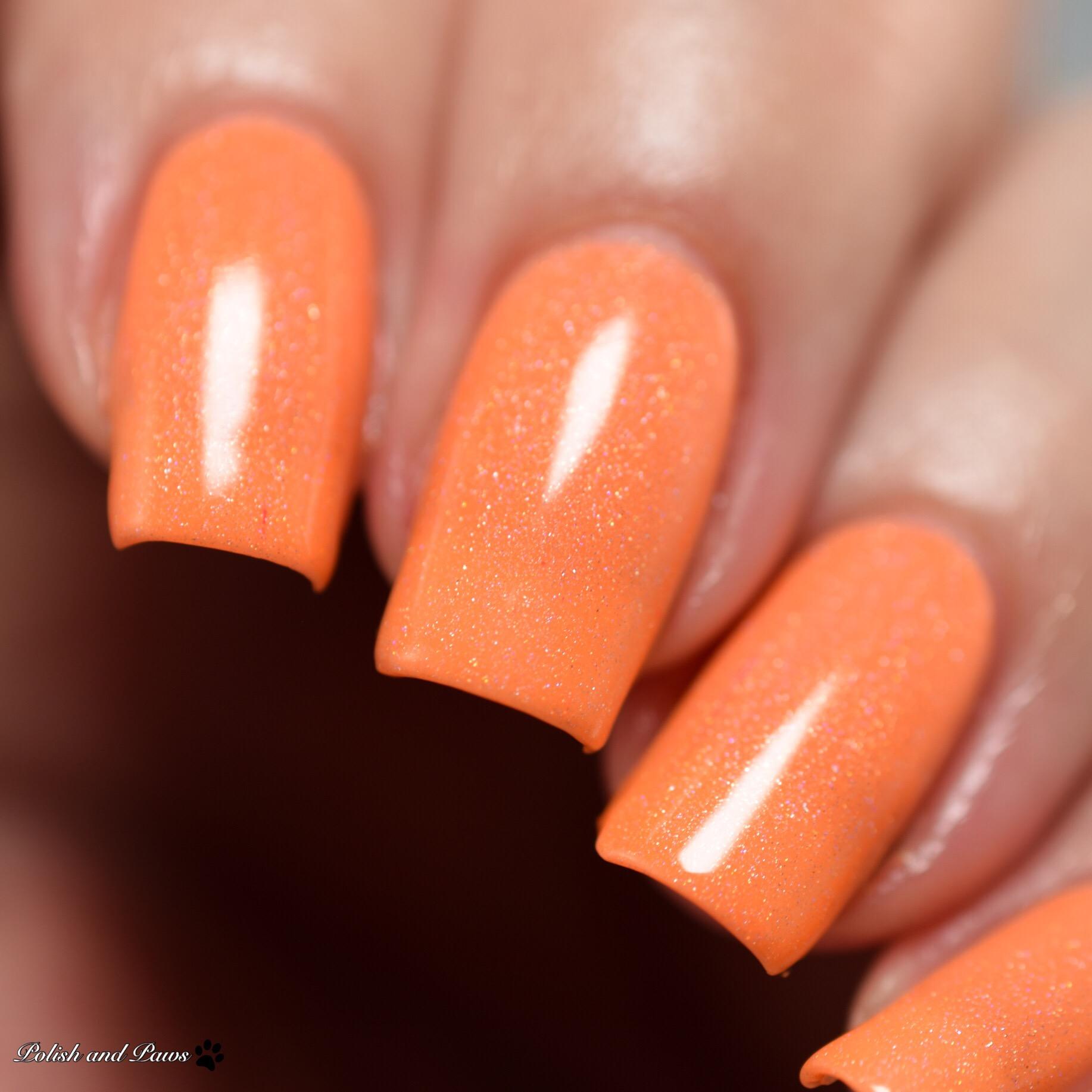 LynB Designs Cosmic Orange