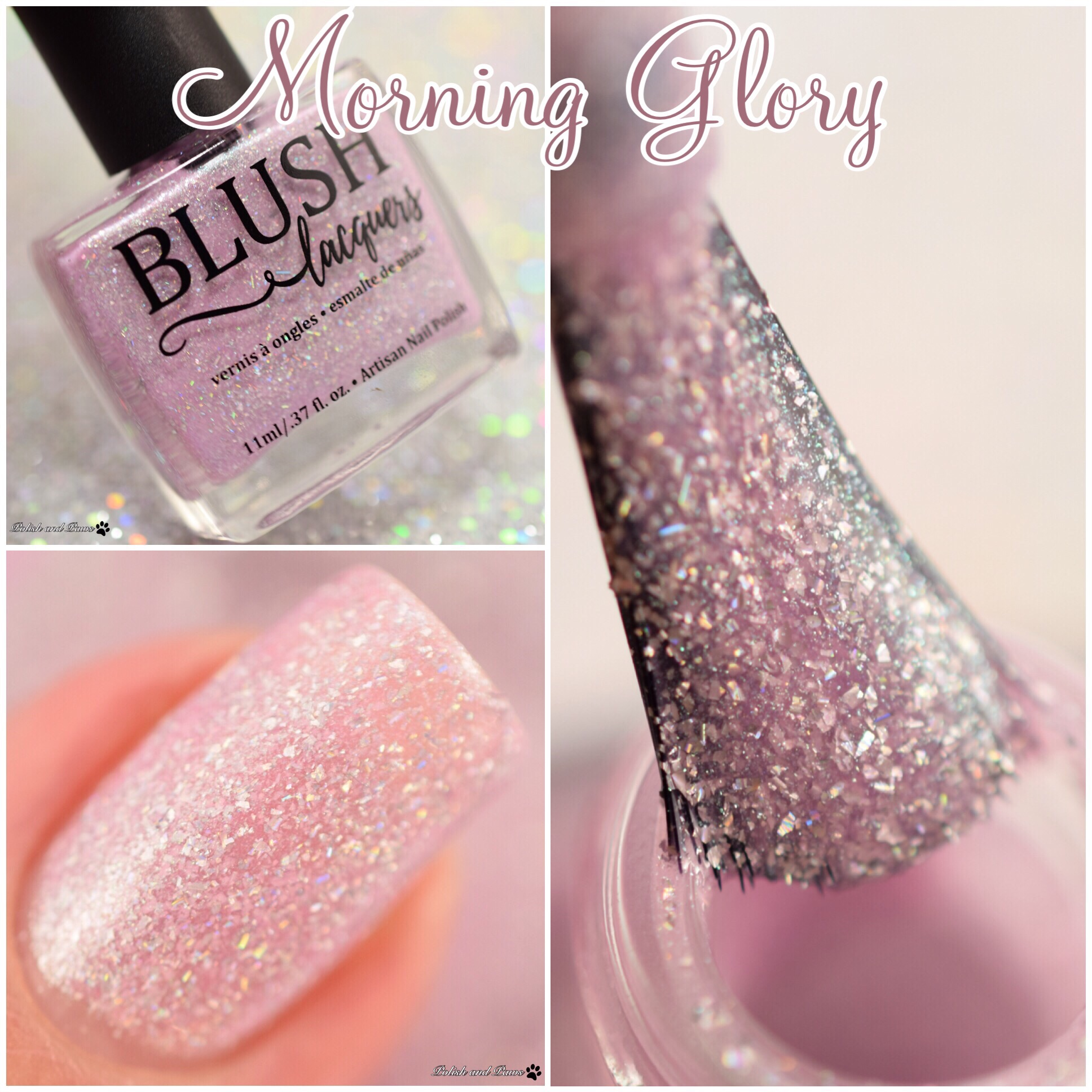 Blush Lacquers Morning Glory