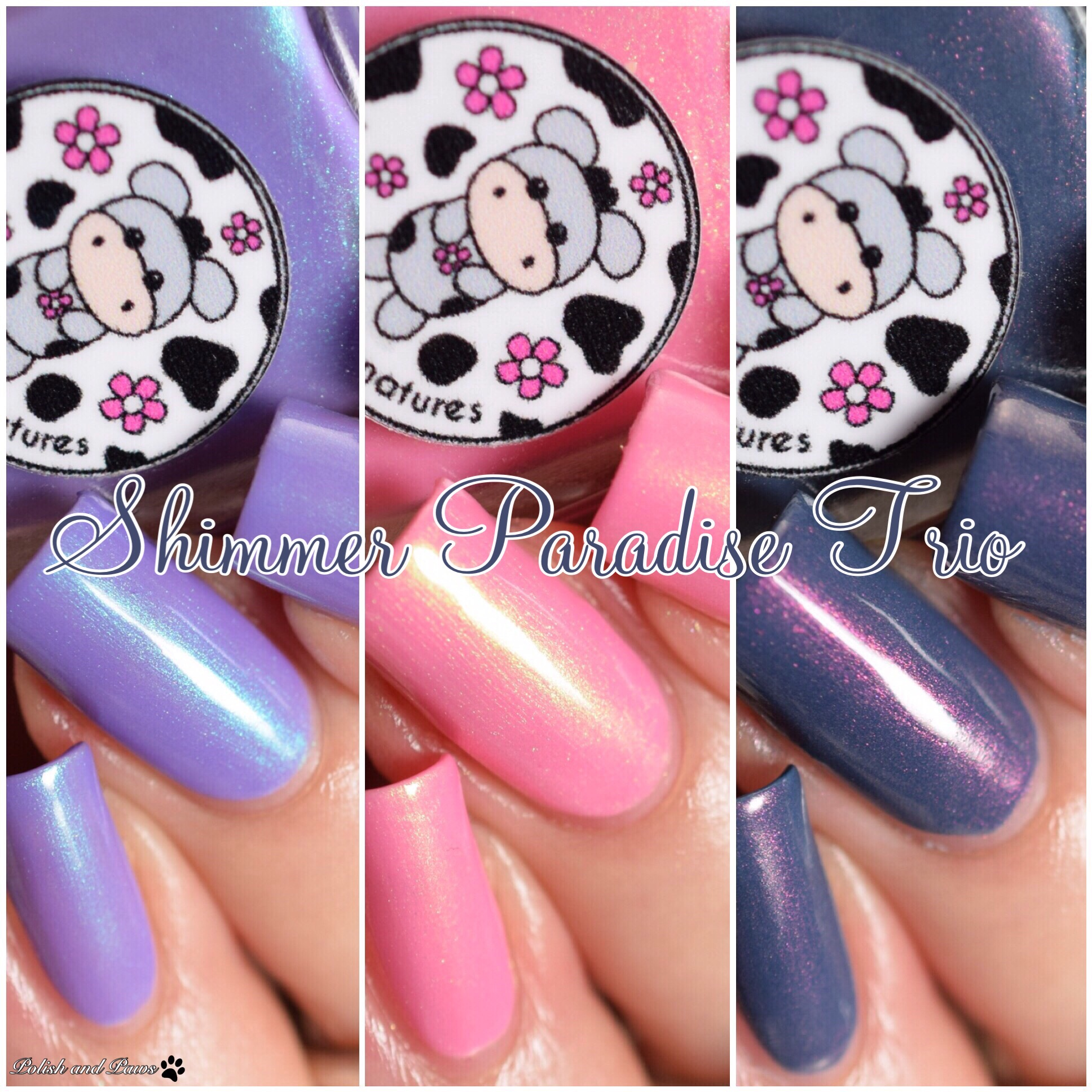 Moo Moo's Signatures Shimmer Paradise Trio