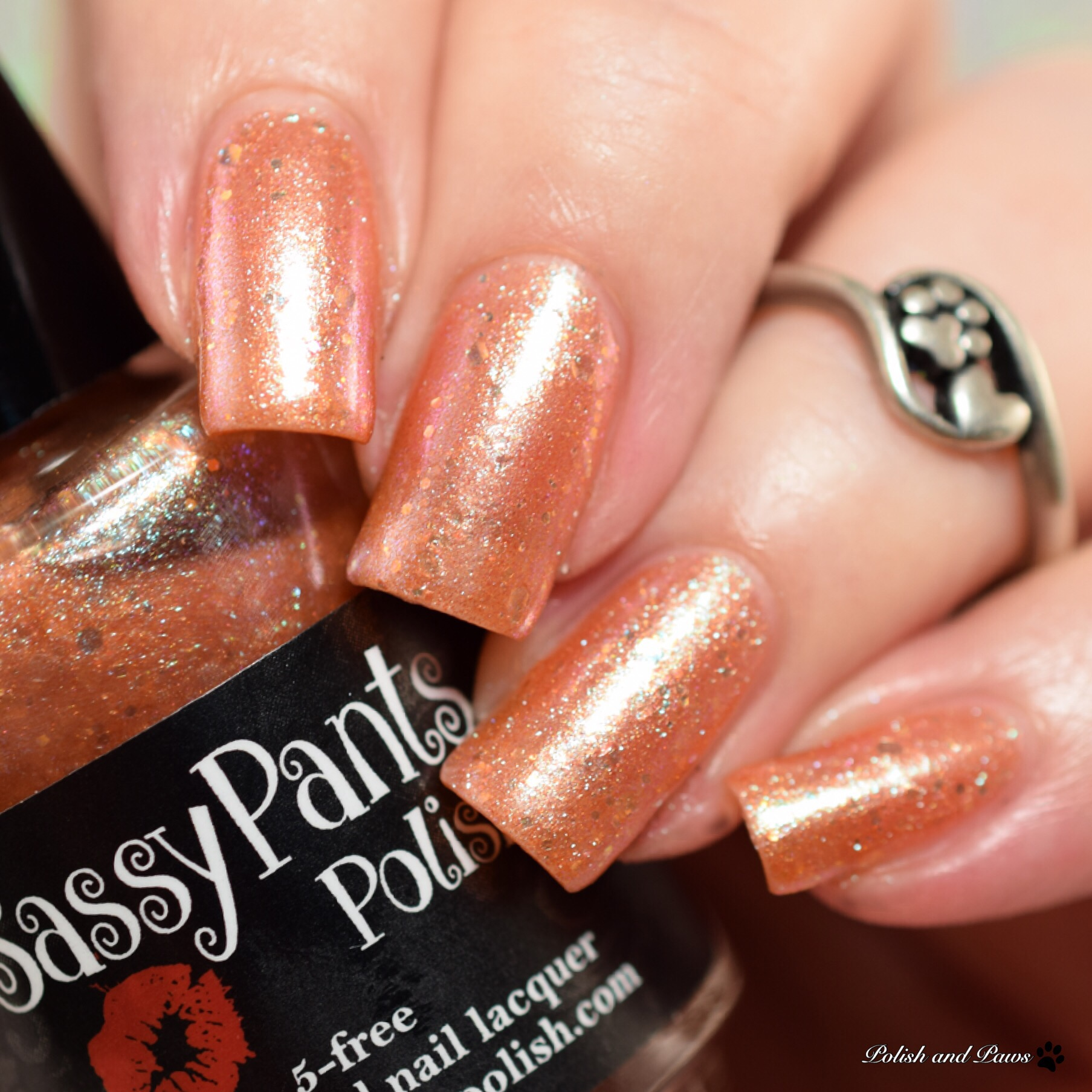 Sassy Pants Polish Mermaid's Dream