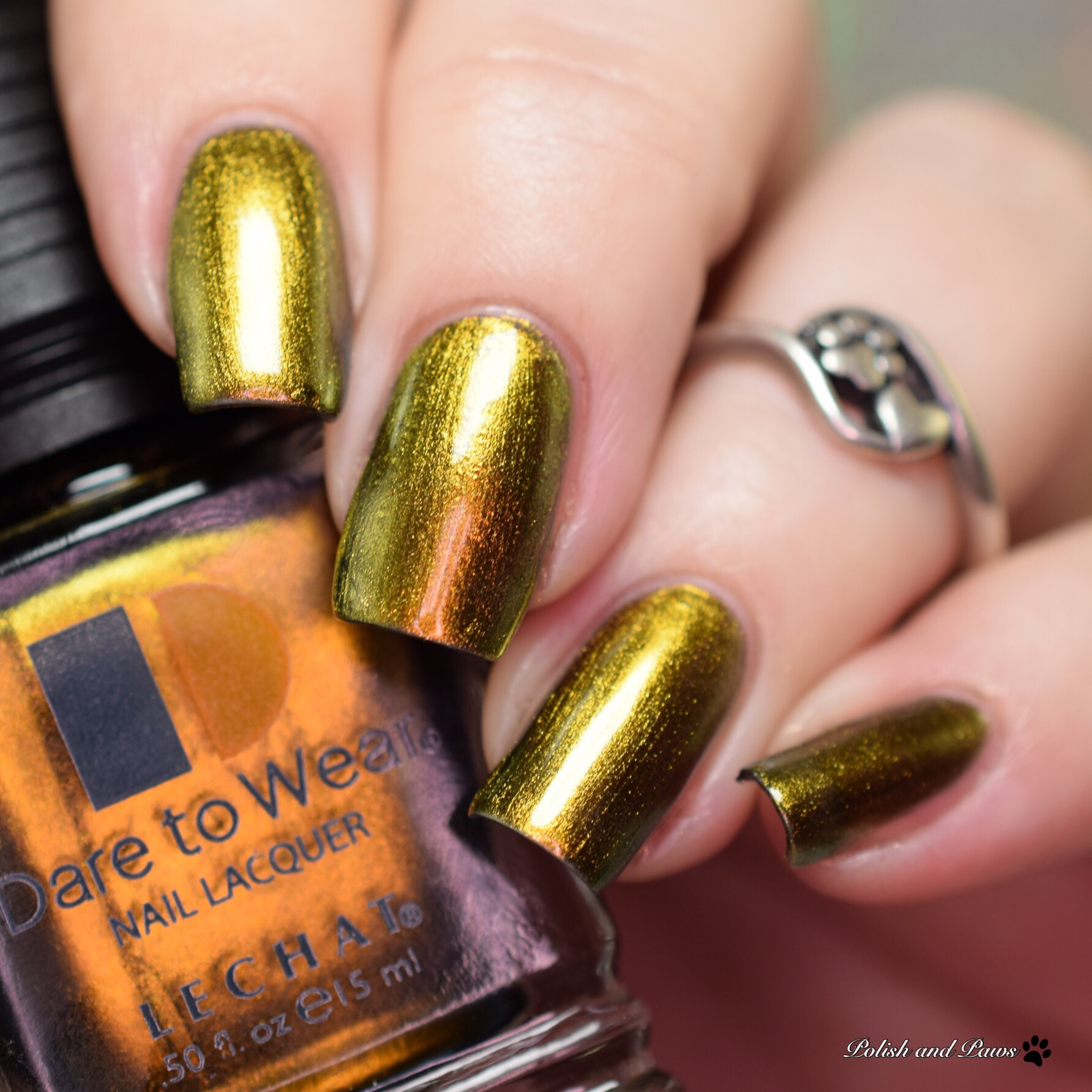 Le Chat Nail Lacquer Infinity