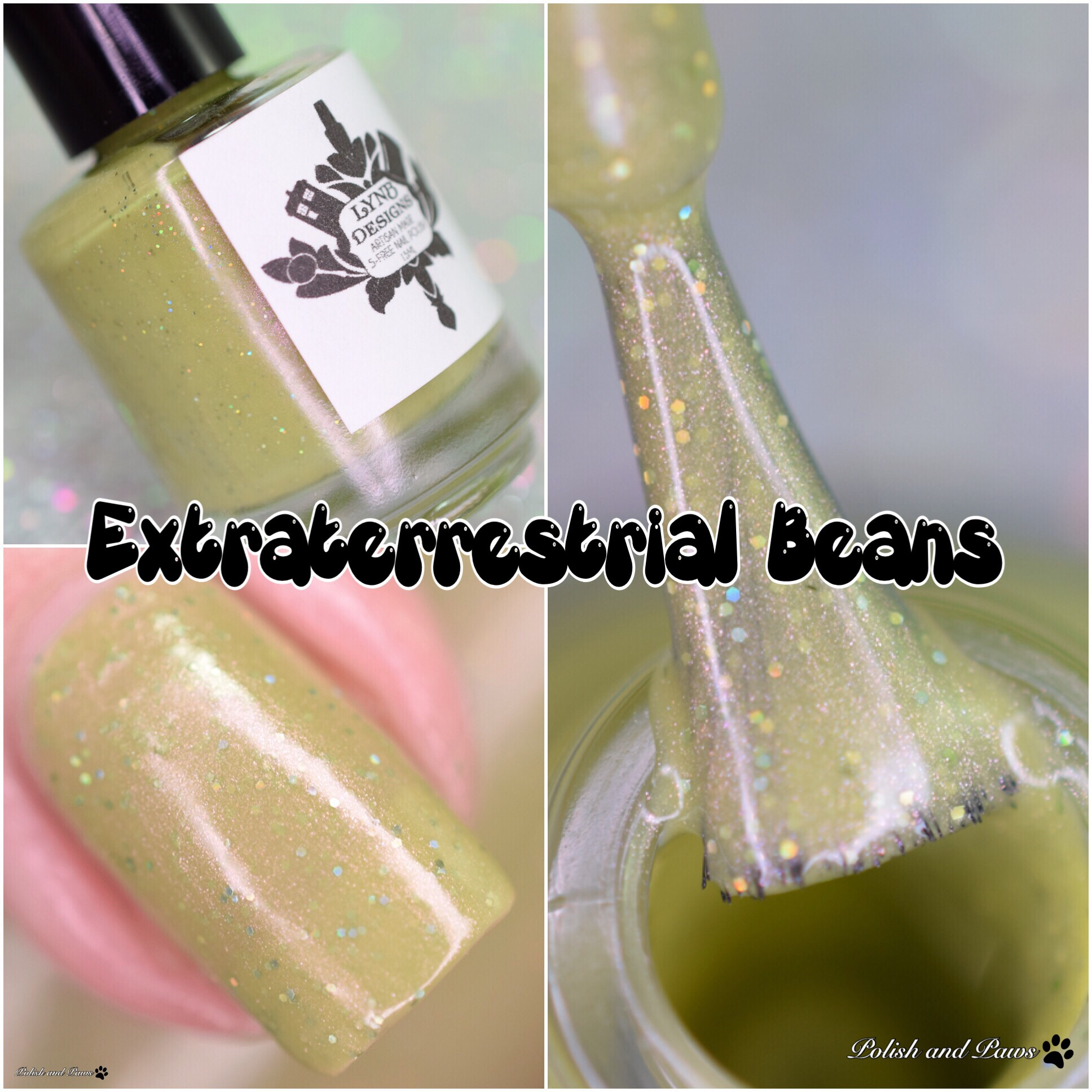 LynB Design Extraterrestrial Beans