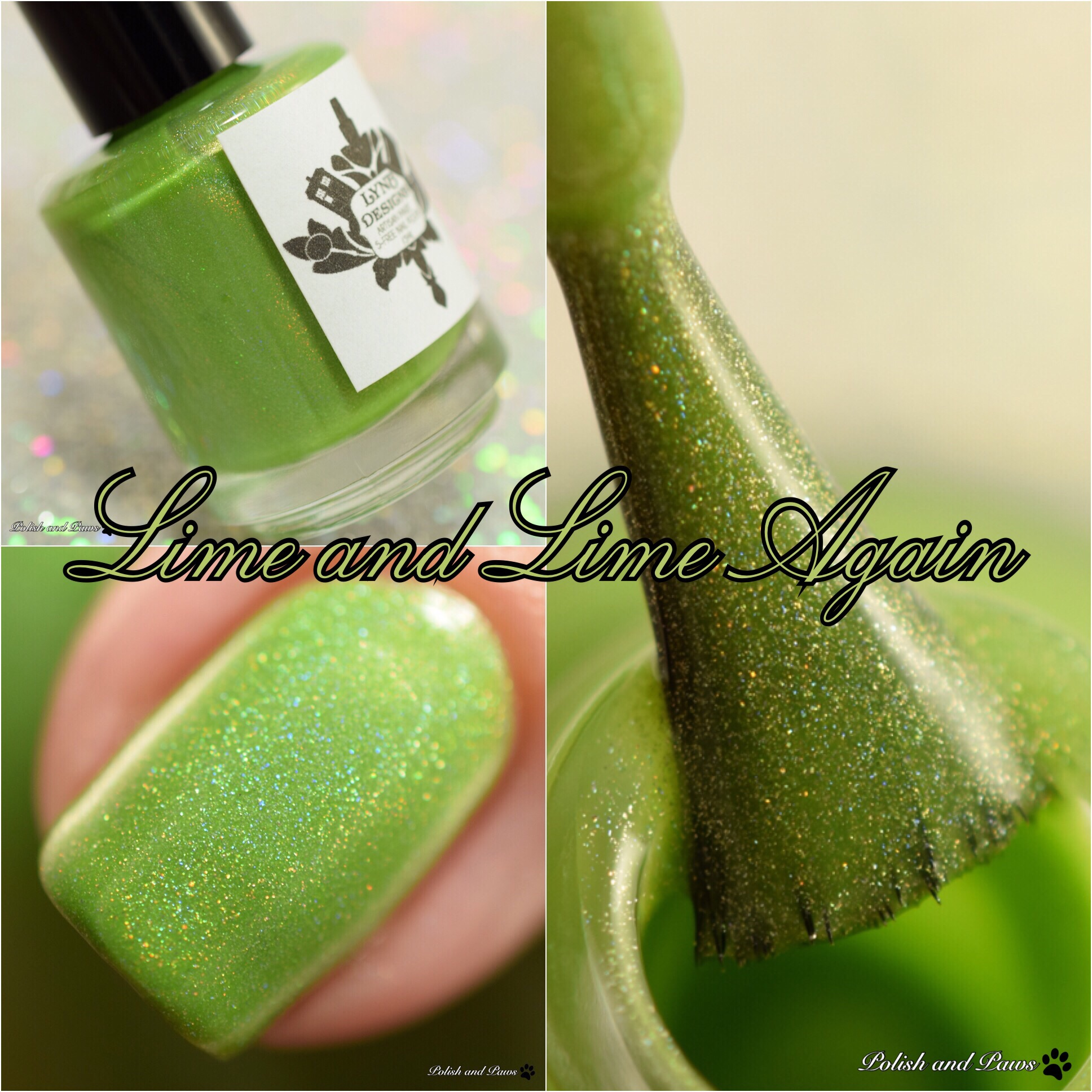 LynB Designs Lime and Lime Again