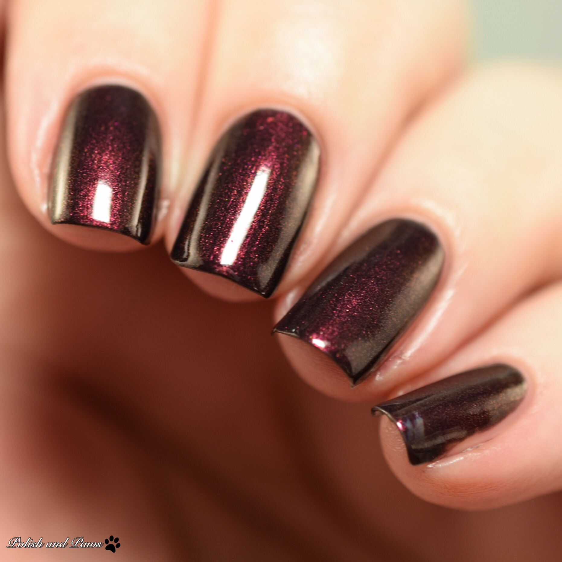 Moo Moo\'s Signatures Shimmer Paradise Collection Sequel Shades ...