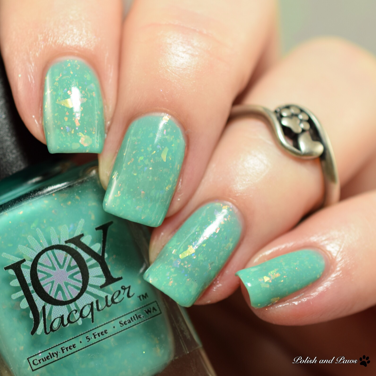Joy Lacquer December Turquoise