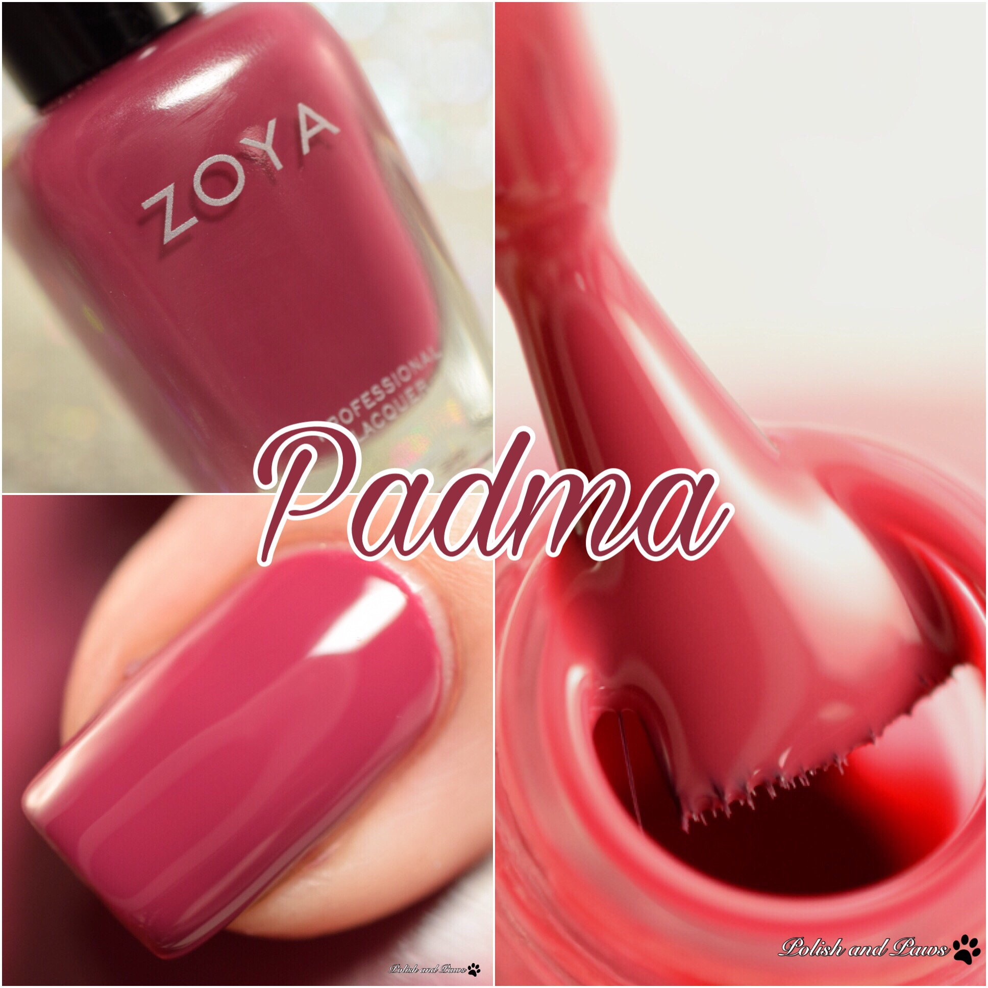 Zoya Padma