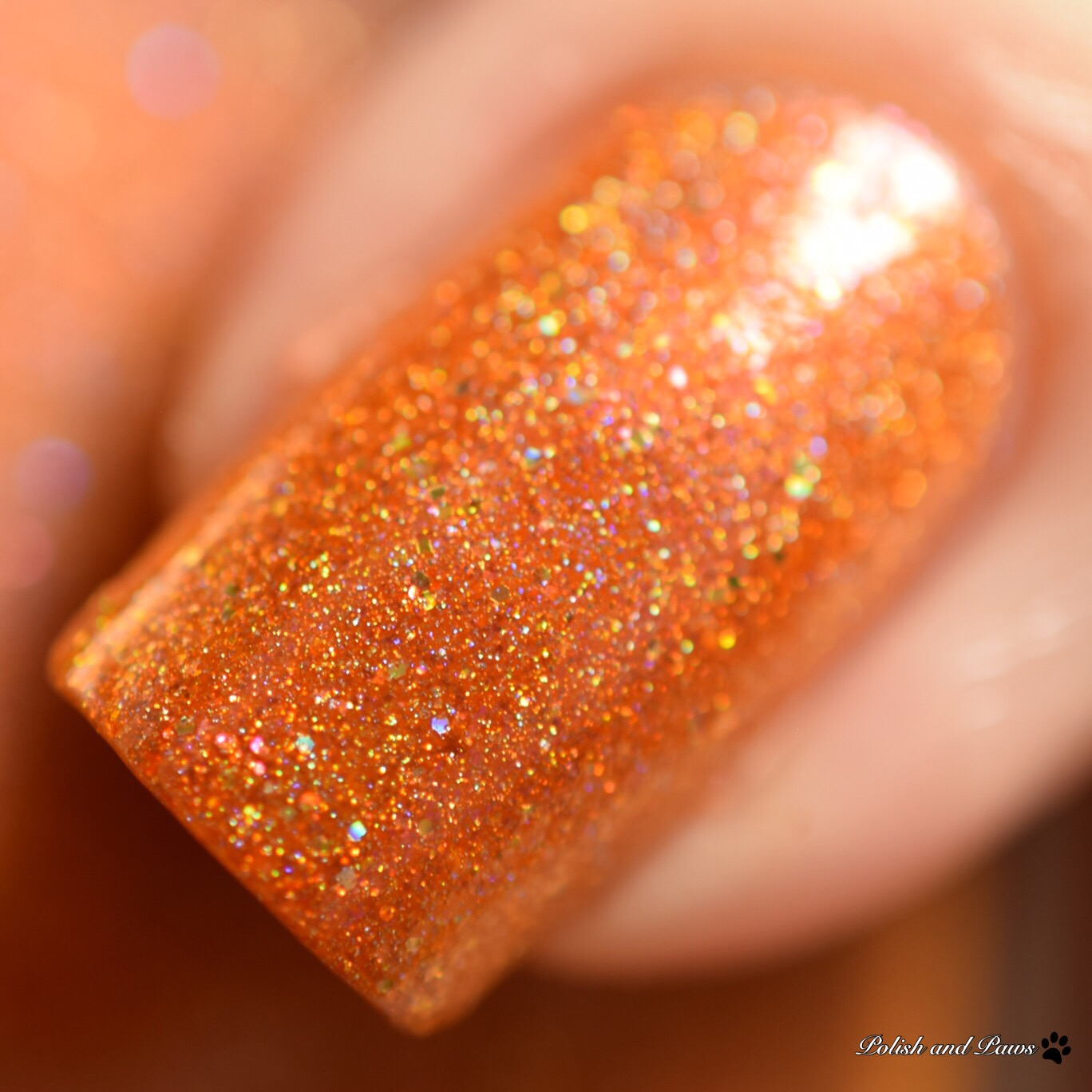 MDJ Creations Roy G. Biv Orange