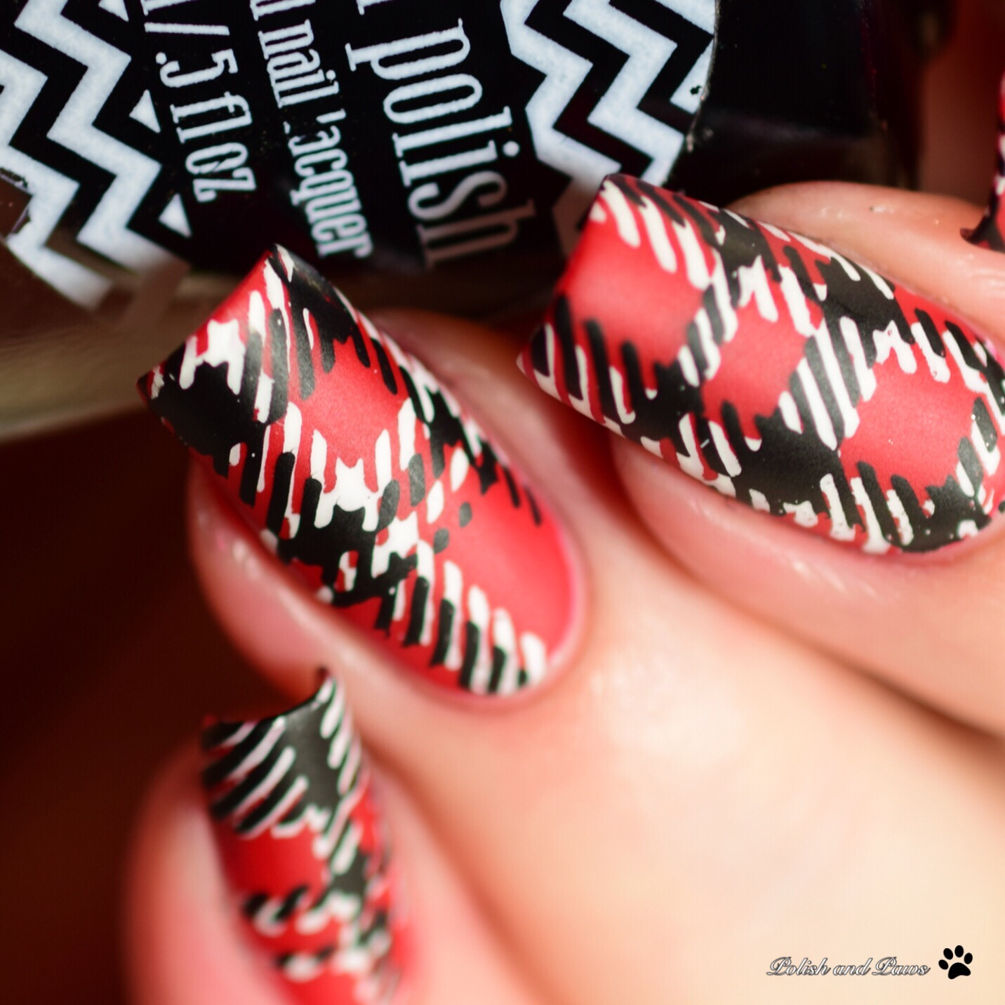 Nicole Diary ND-112 Stamping Plate ~ Nail Art | Polish and Paws