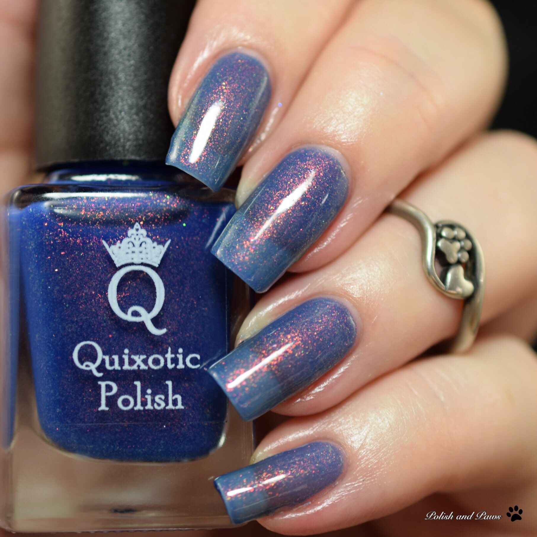 Quixotic Polish Everest Vibes