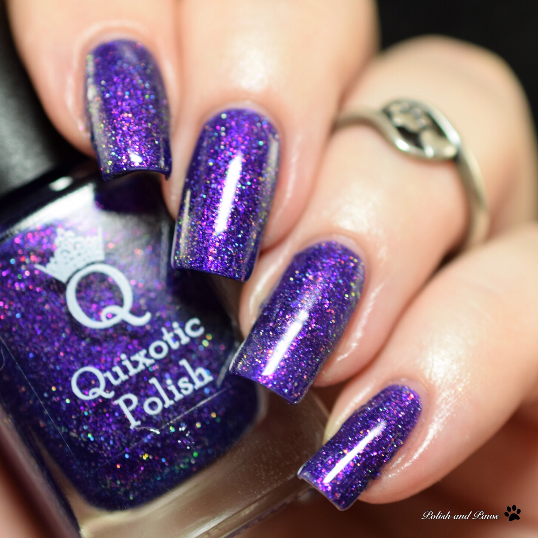 Quixotic Polish Laguna