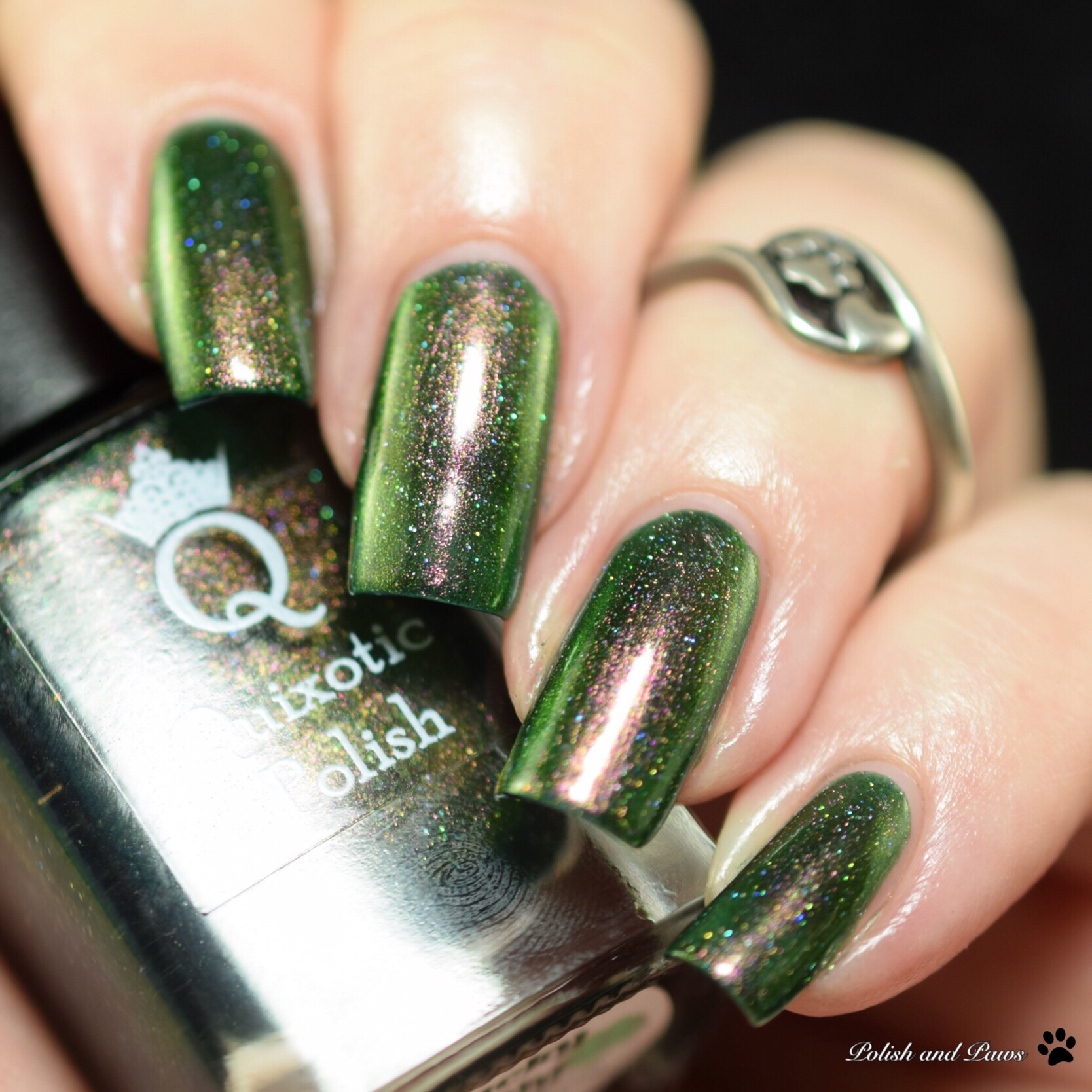 Quixotic Polish Swatch and Review | Polish and Paws