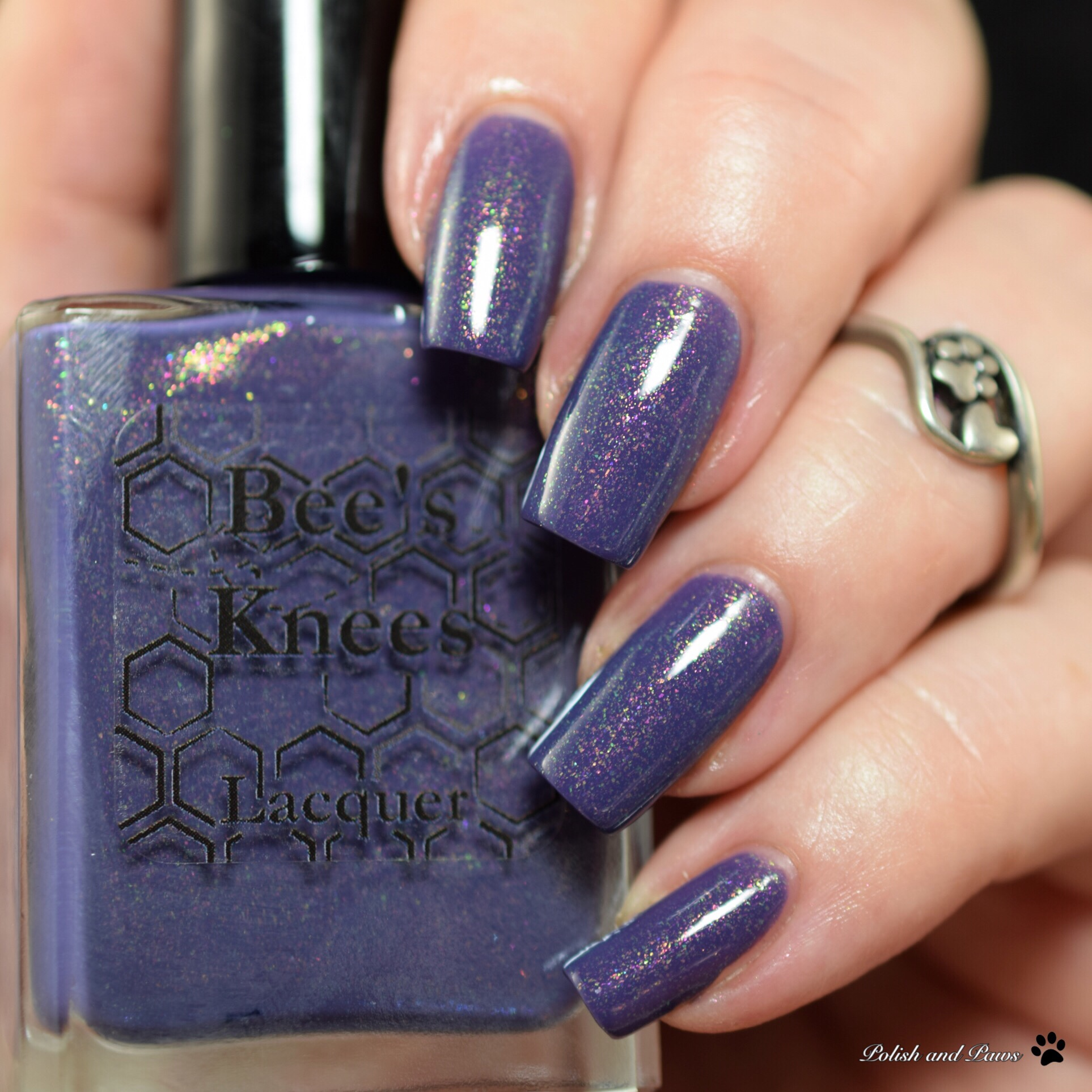 Bee's Knees Lacquer Stormy