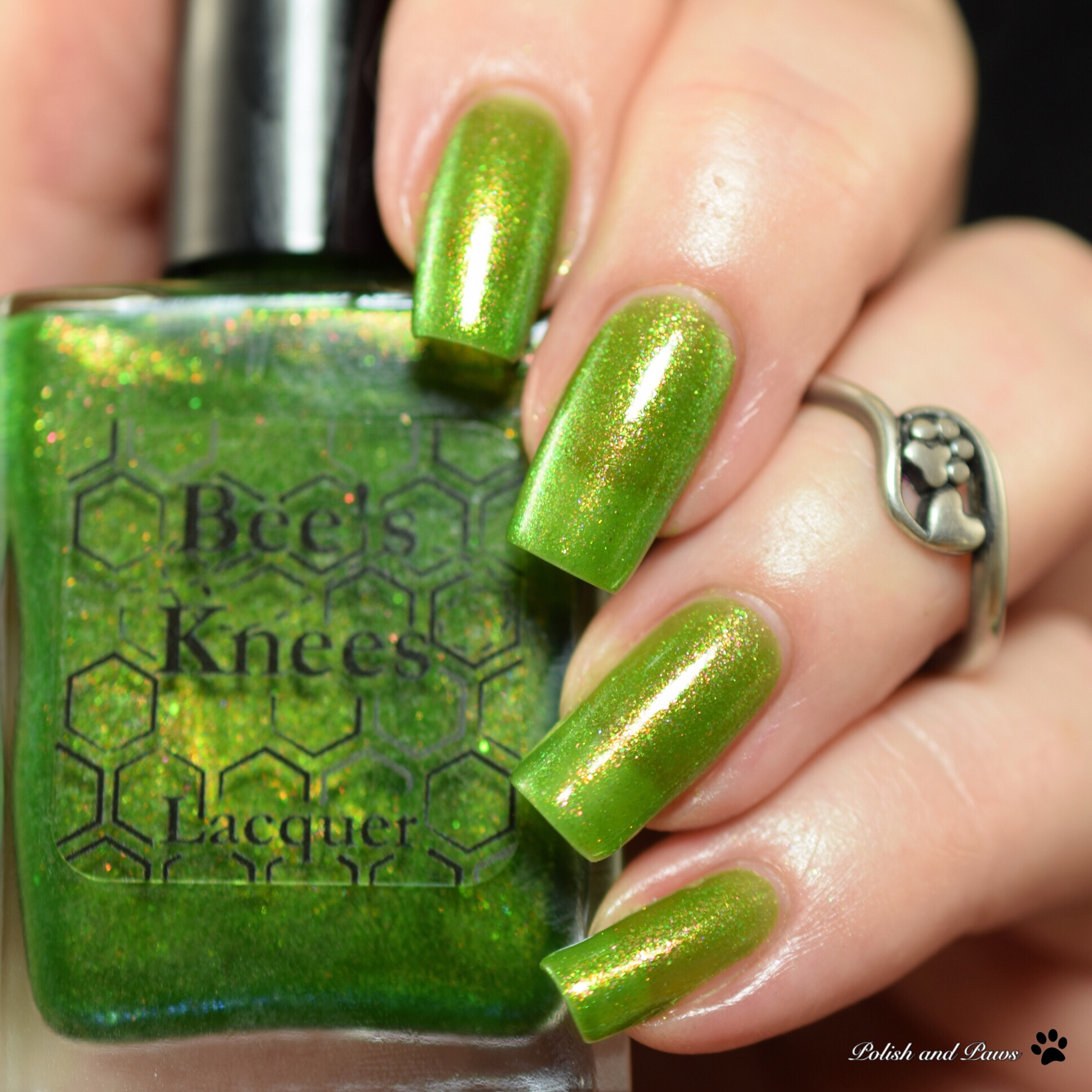 Bee's Knees Lacquer Murky Dismal