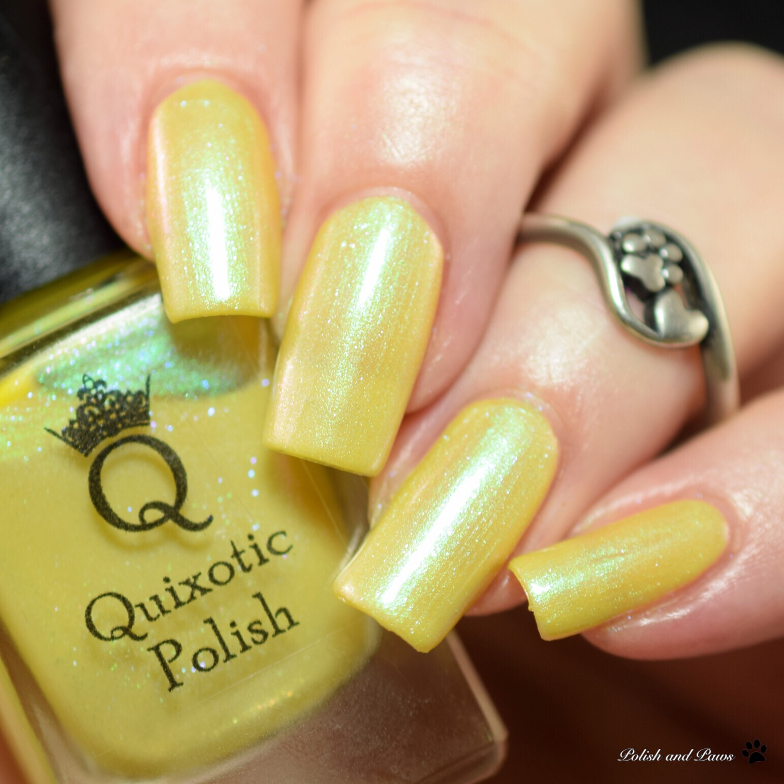 Quixotic Polish Mrs. Potts