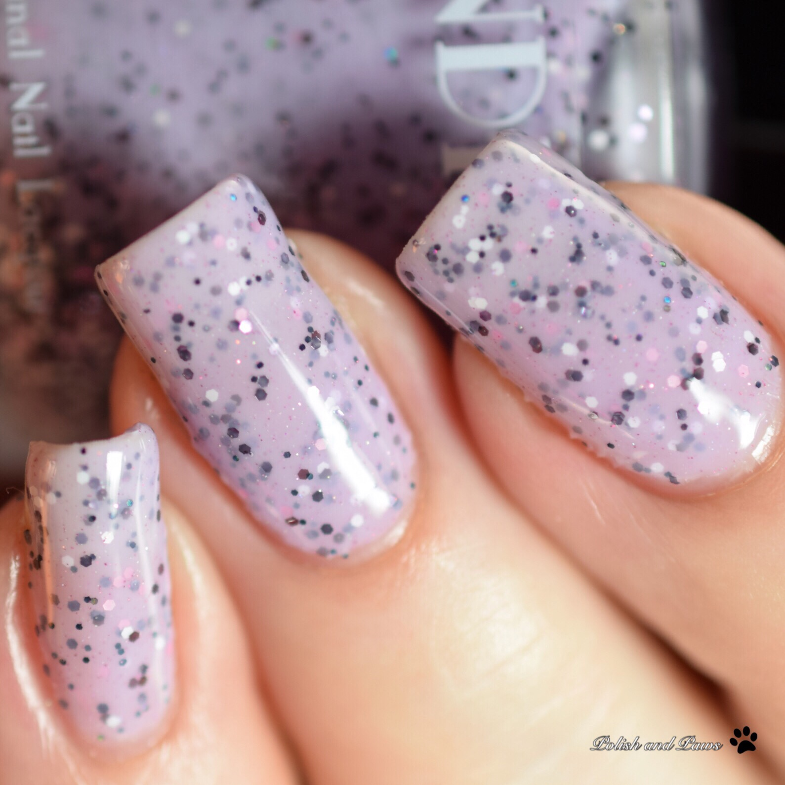 Indie Lacquer Speckled