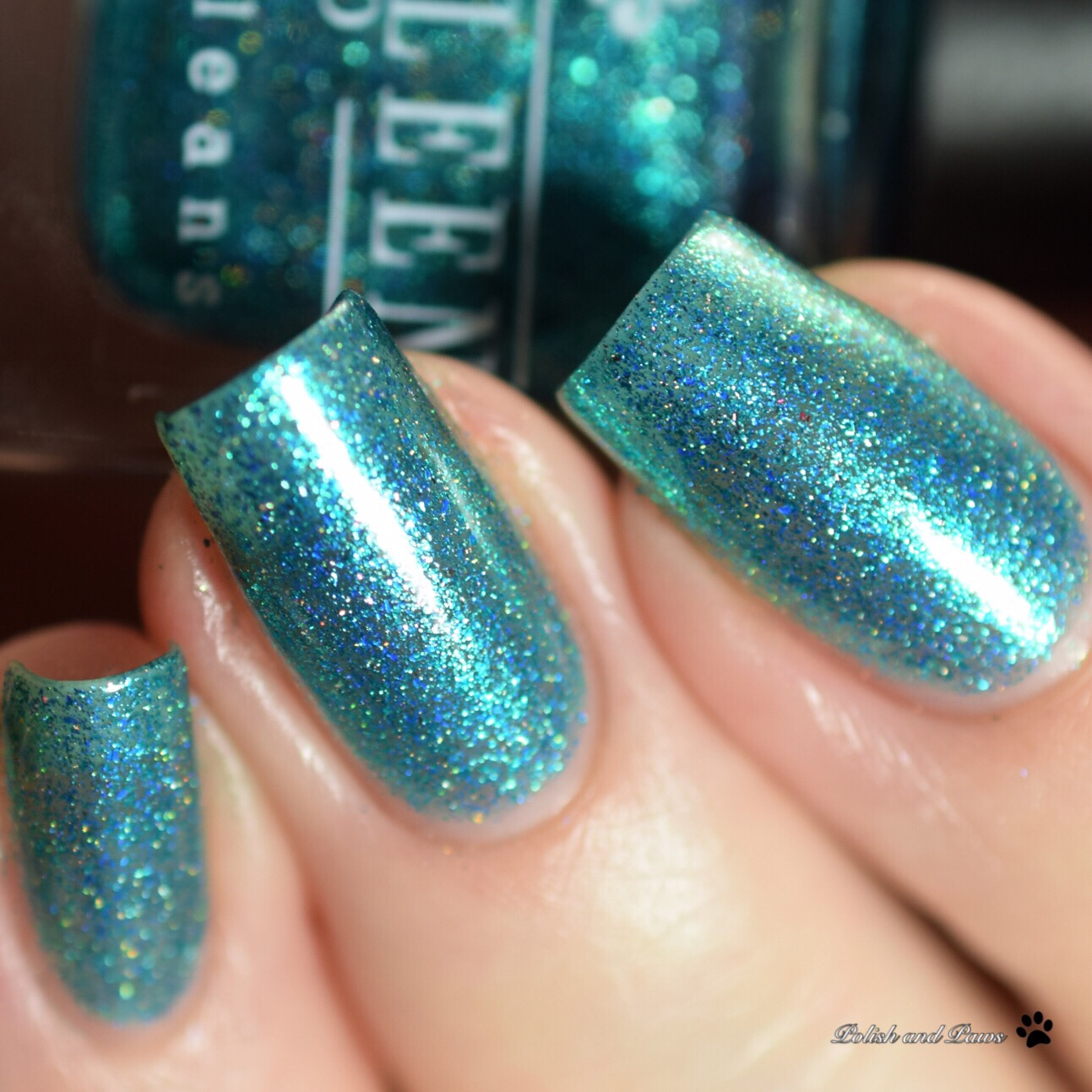 Kathleen & Co Mermaids Tale