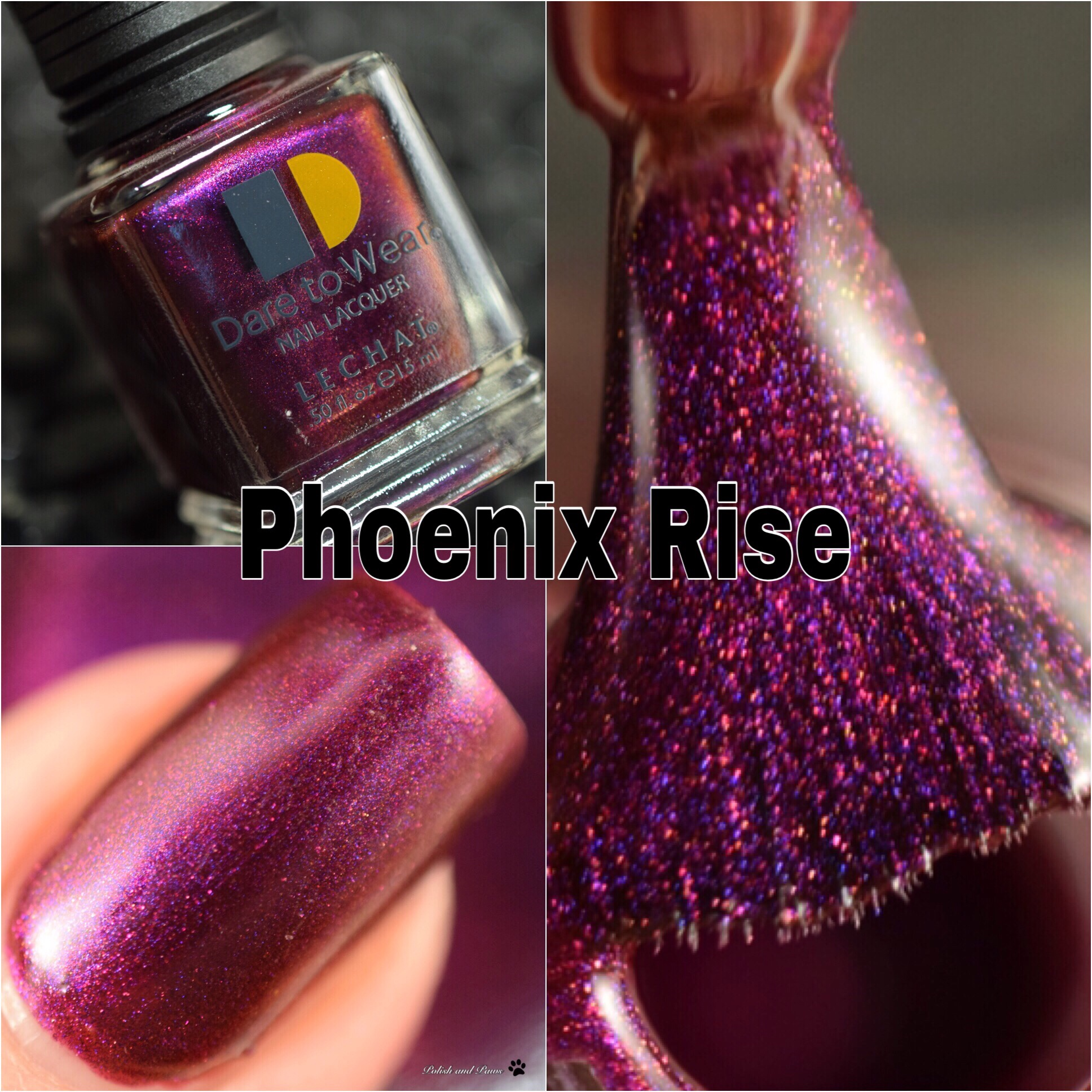LeChat Phoenix Rise