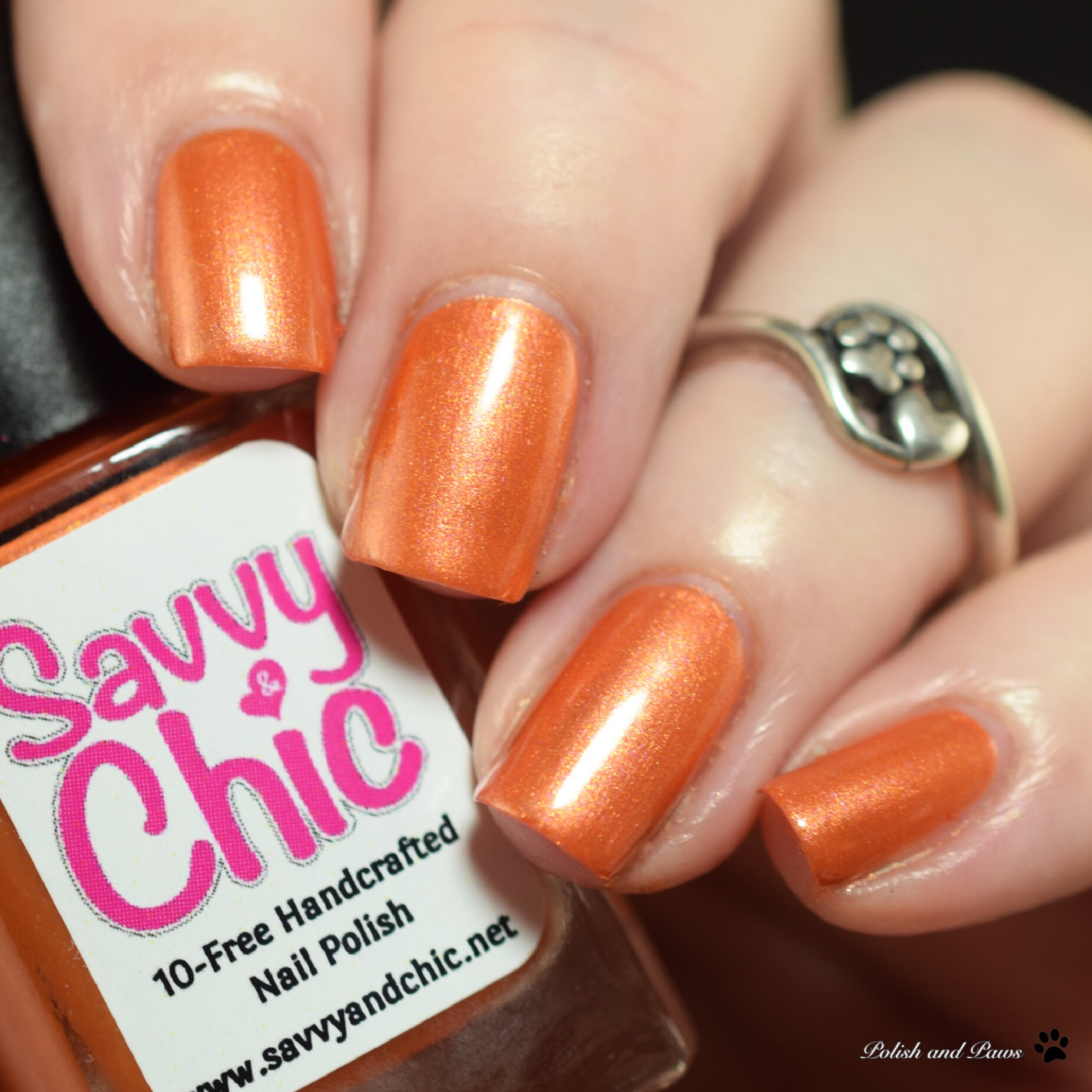 Savvy & Chic Pumpkin Patch