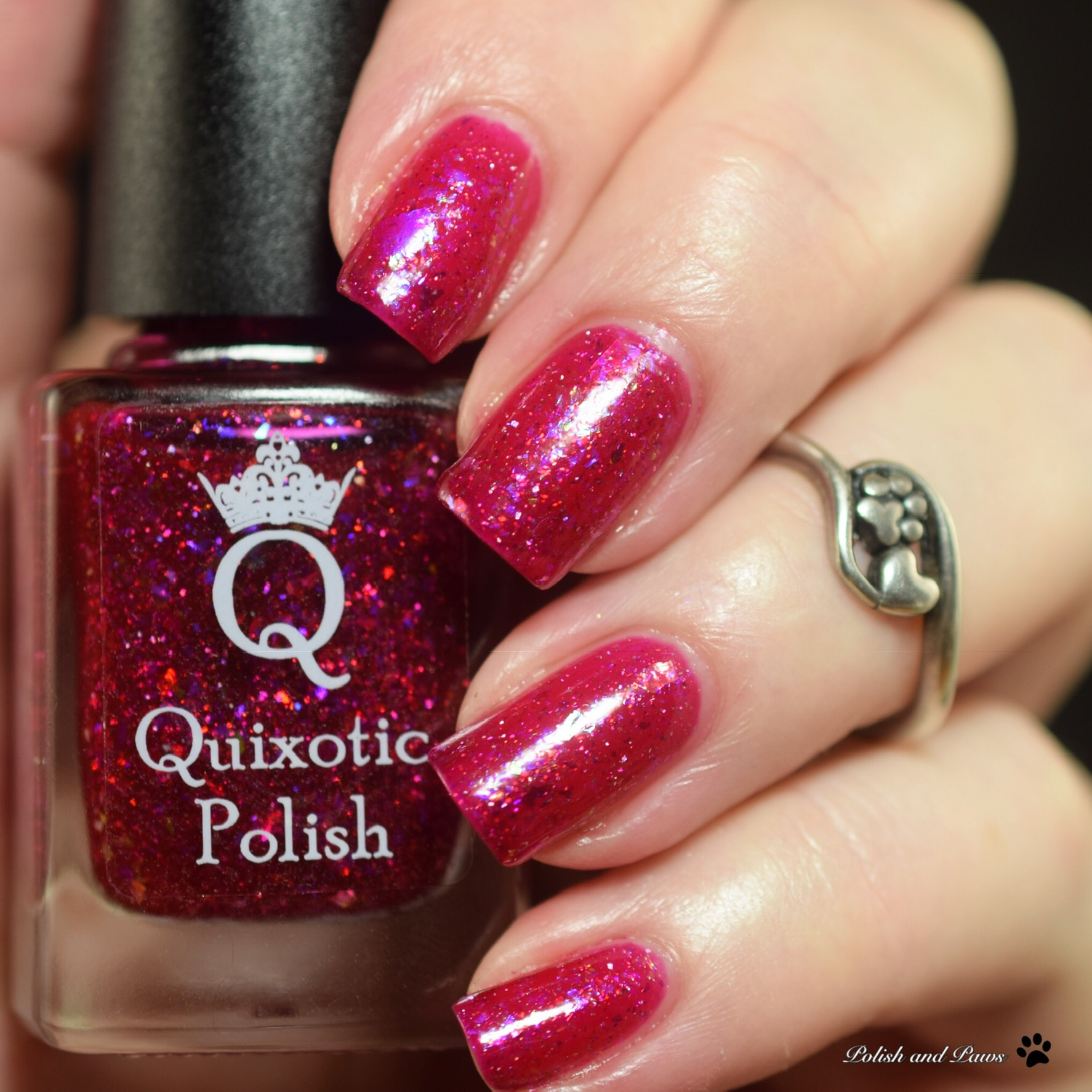 Quixotic Polish Kranberry Sauce