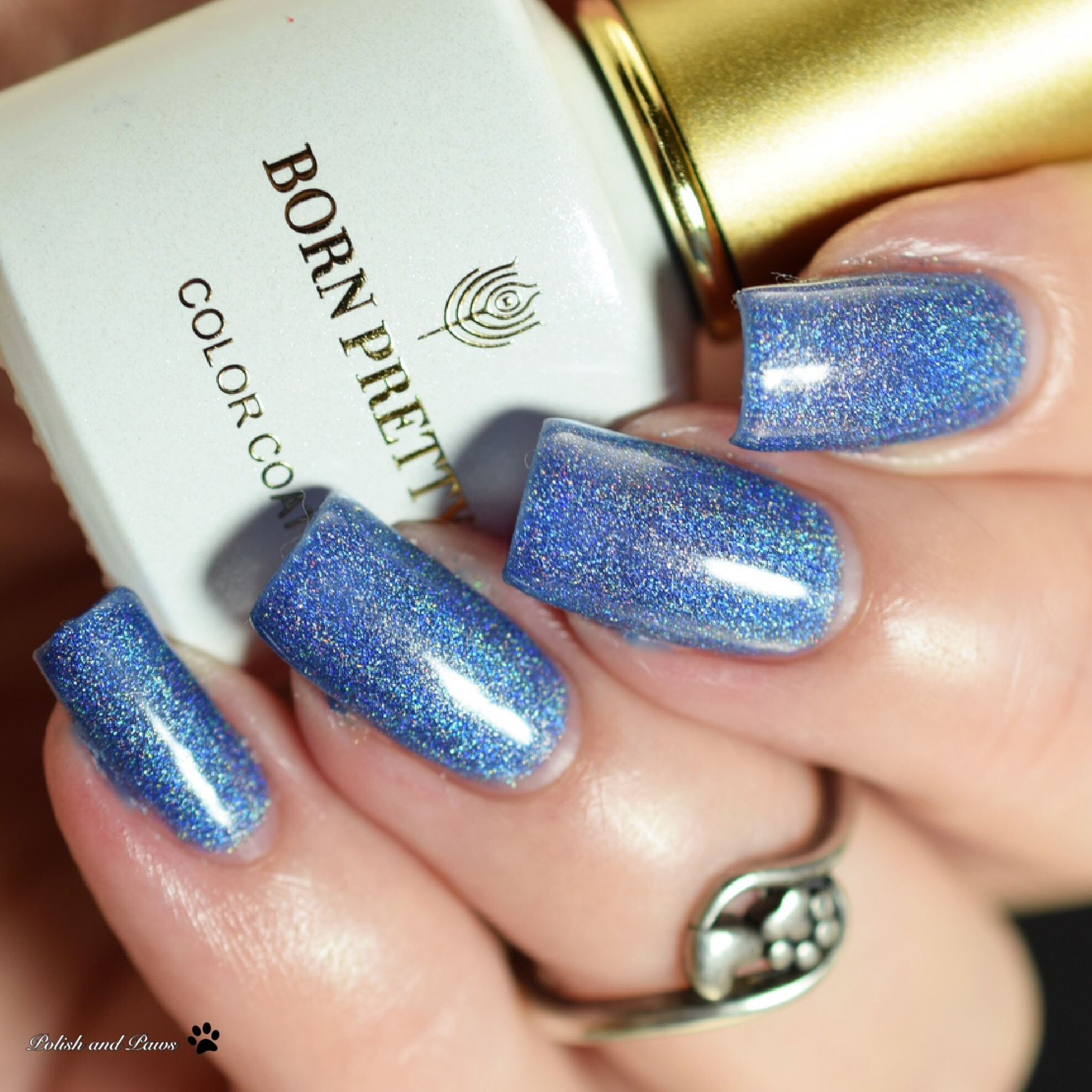 Born Pretty Store Sisters of Pearl Holographic Gel Nail Polish