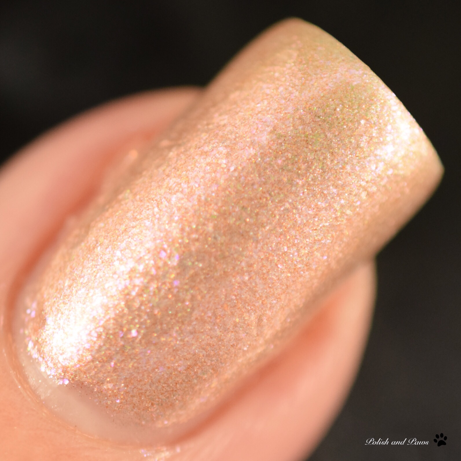Literary Lacquers Sunstone Palace