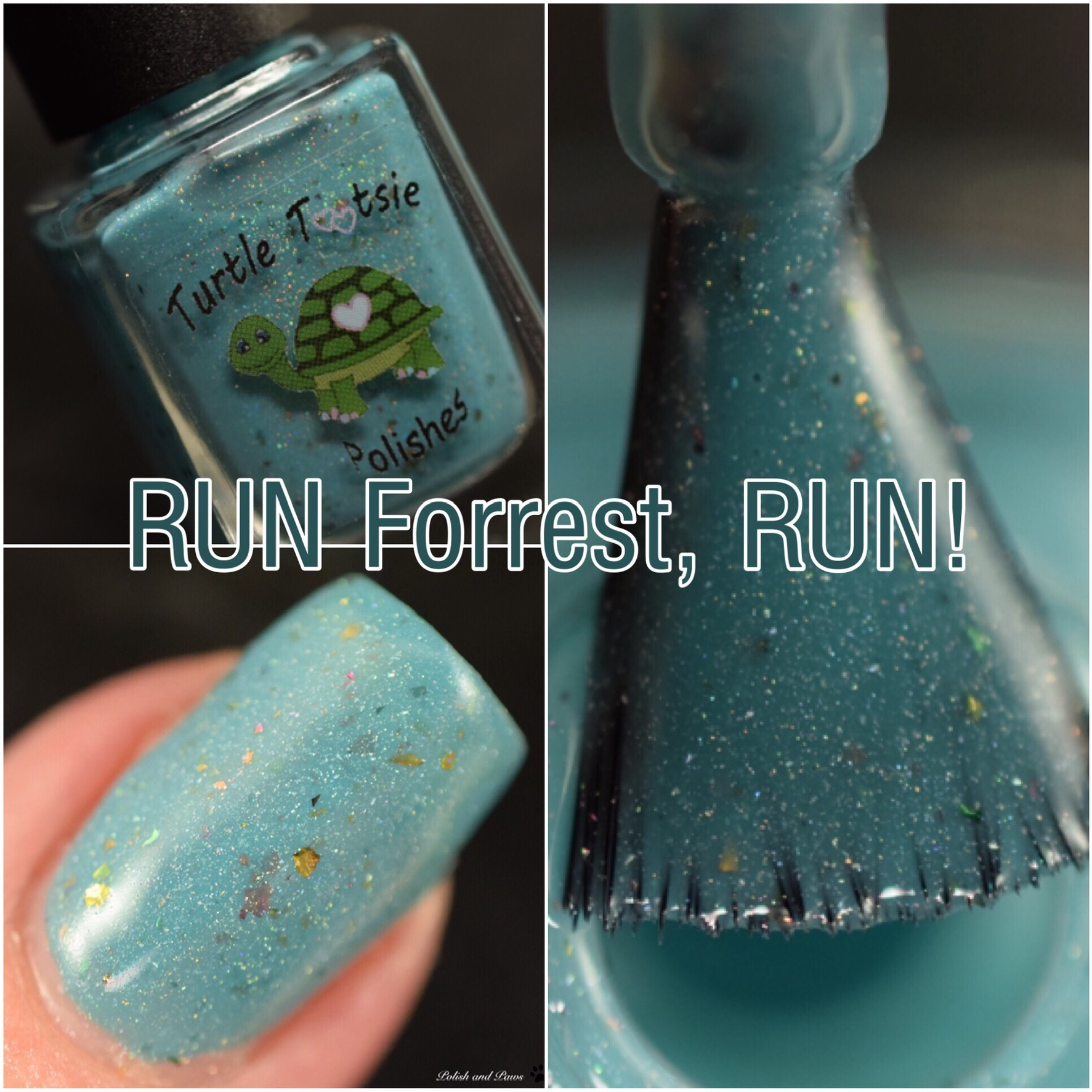Turtle Tootsie Polishes Run Forrest, Run!