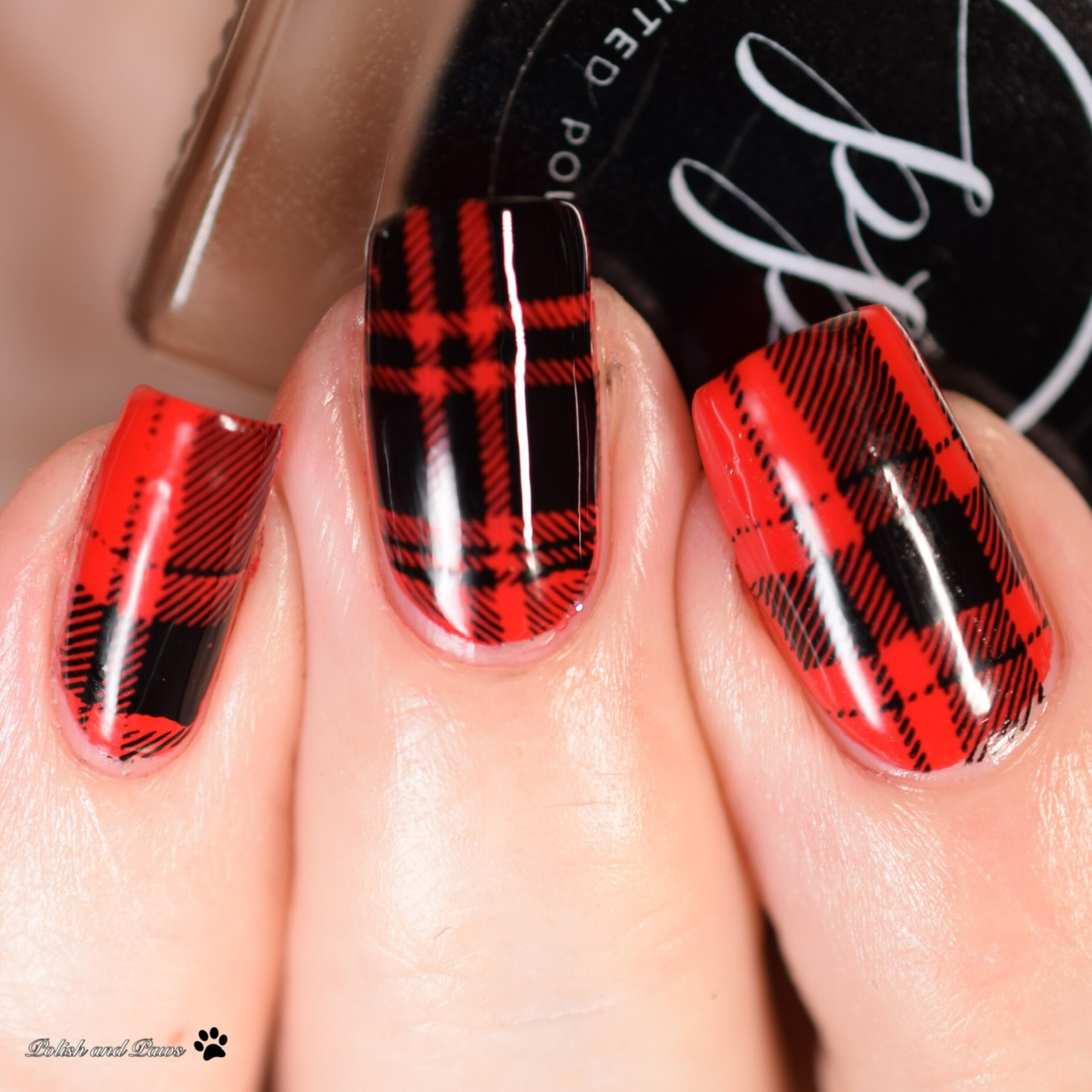 The Digital Dozen does Patterns: Red Plaid